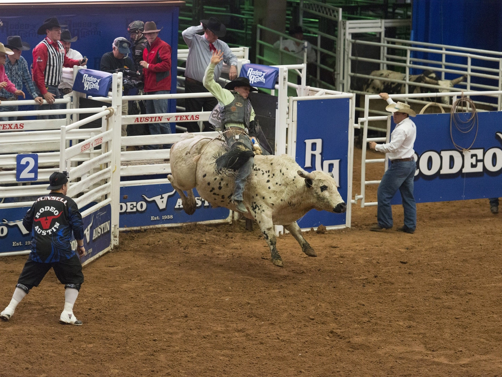 Bull riding wallpapers 62 images for Bull riding madison square garden
