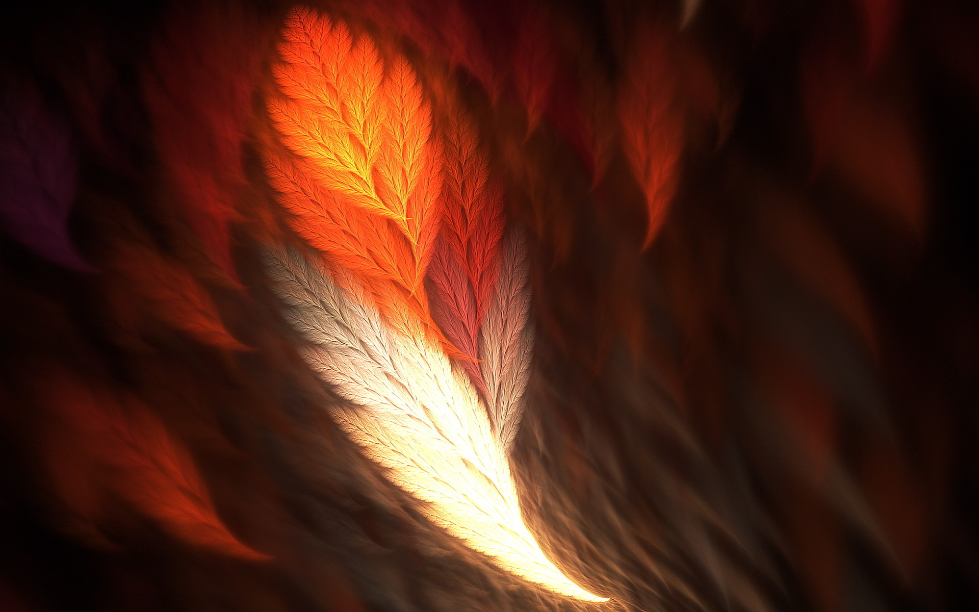 1920x1200 Phoenix Feather Wallpapers | Pictures
