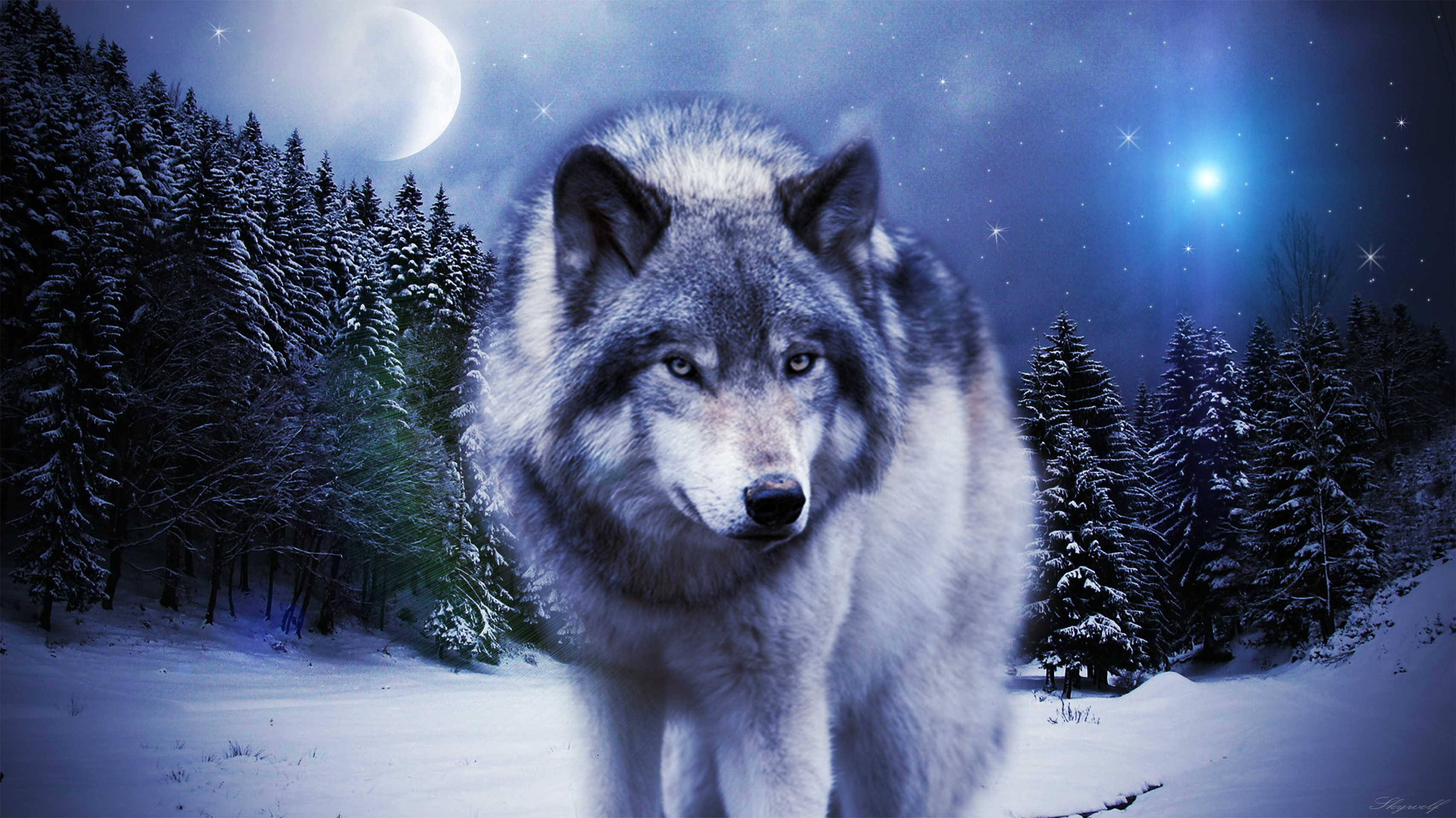 3415x1920 Wolf Hd Wallpaper