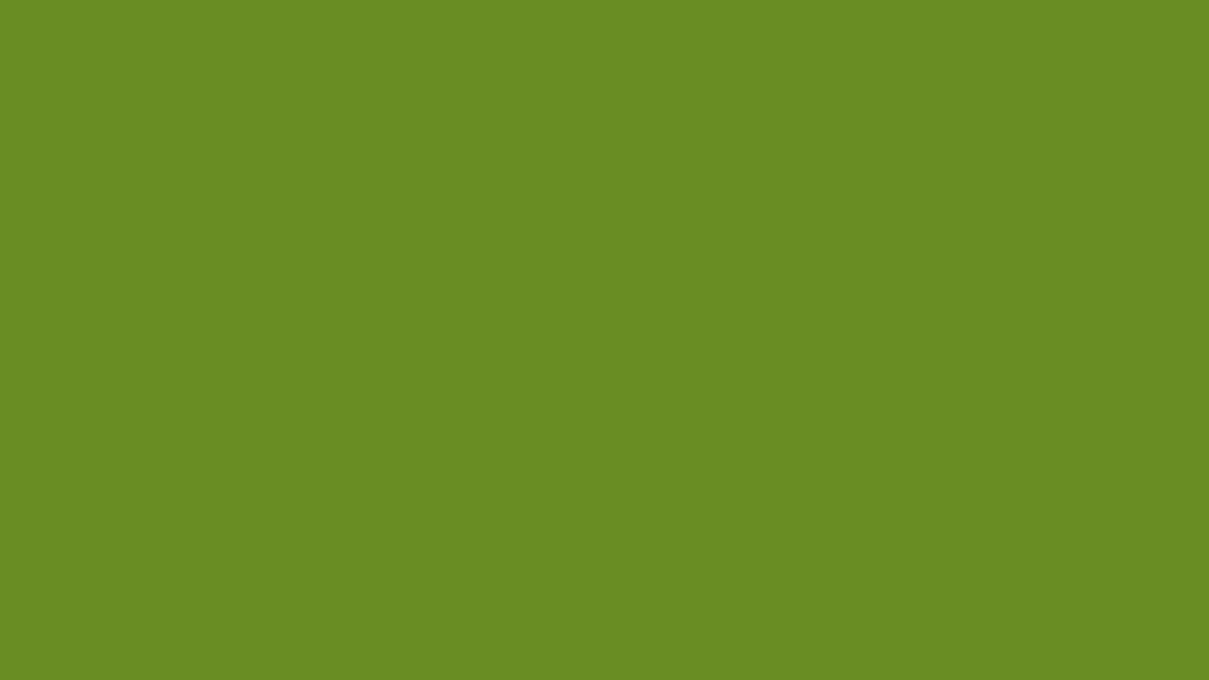 3840x2160 Olive Green Wallpaper