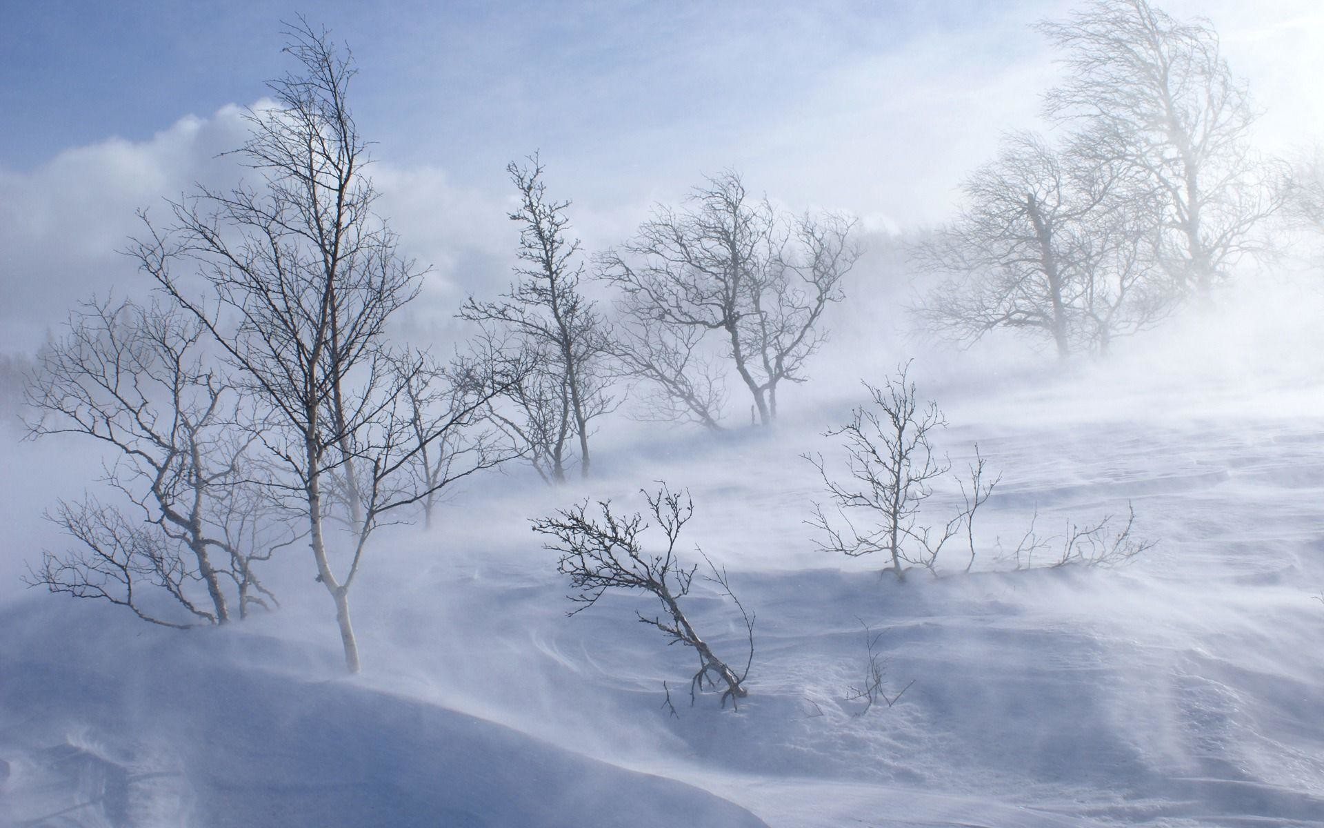 1920x1200 Snow Storm Wallpapers - Full HD wallpaper search