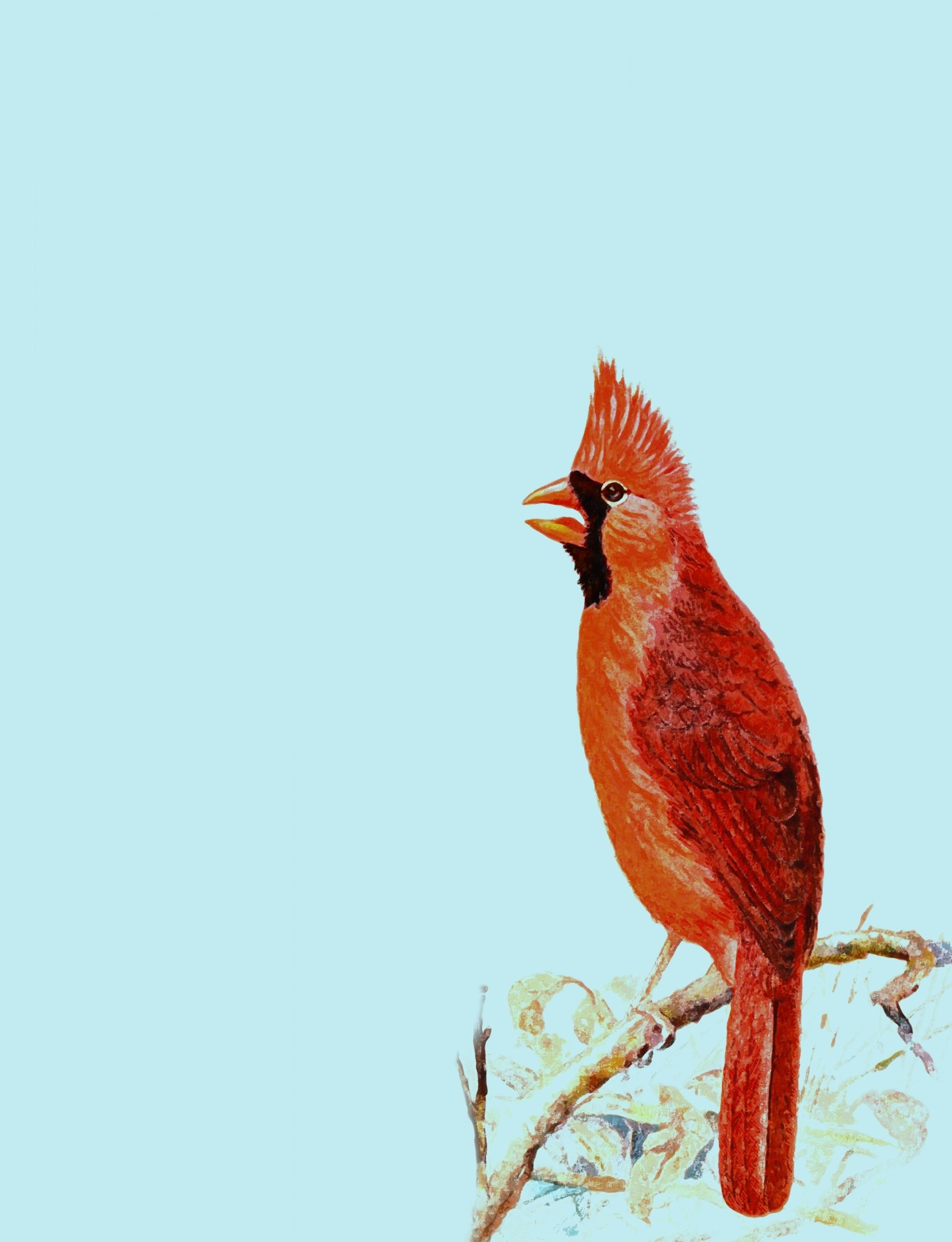 Res: 1473x1920, Cardinal Bird Red