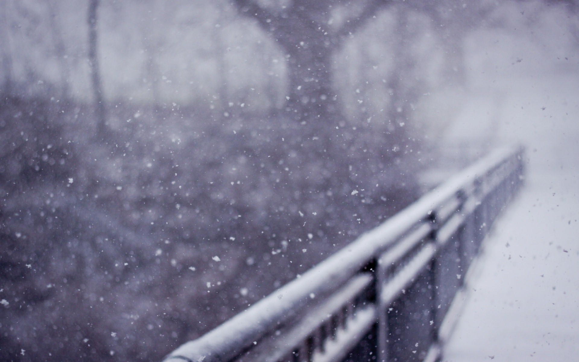 1920x1200 Winter Wallpapers. Previous Wallpaper. Beautiful Snow ...