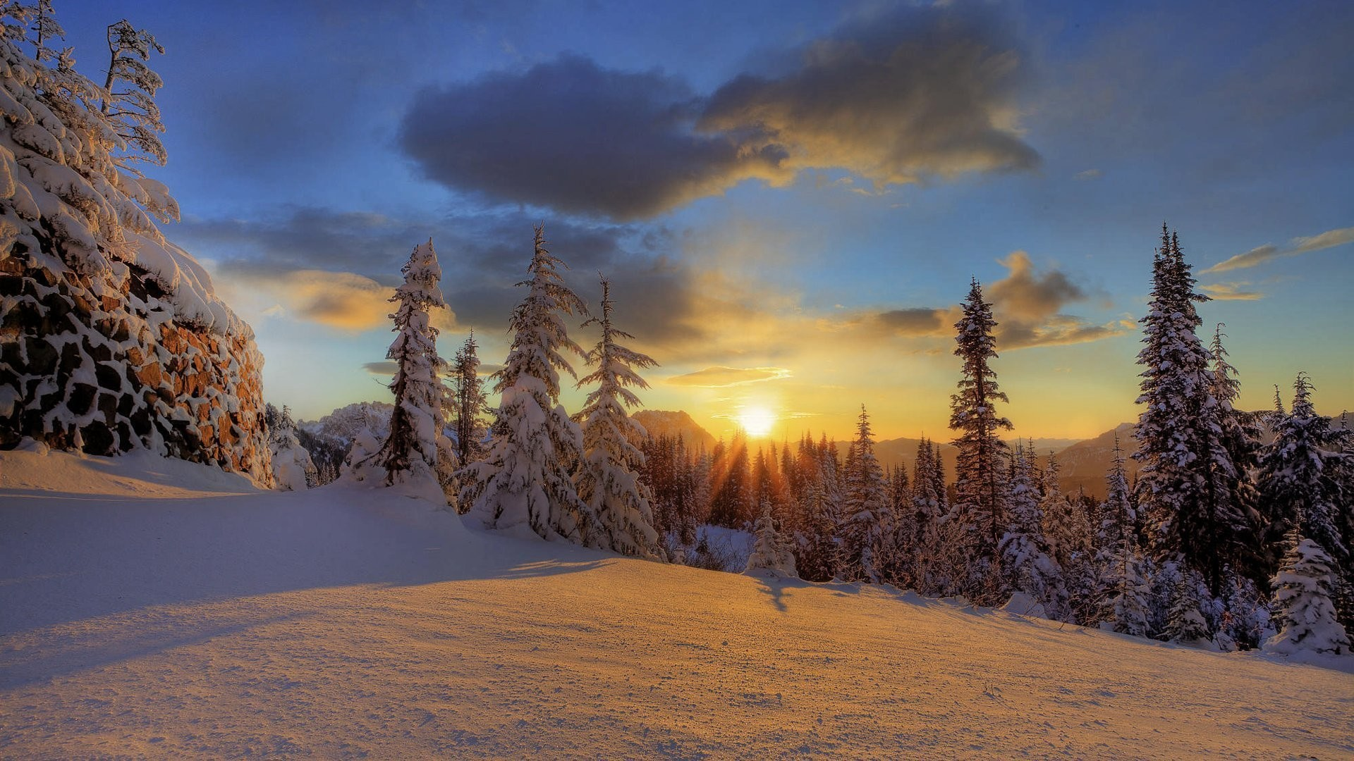 1920x1080 mount rainier national park winter forest snow mountain