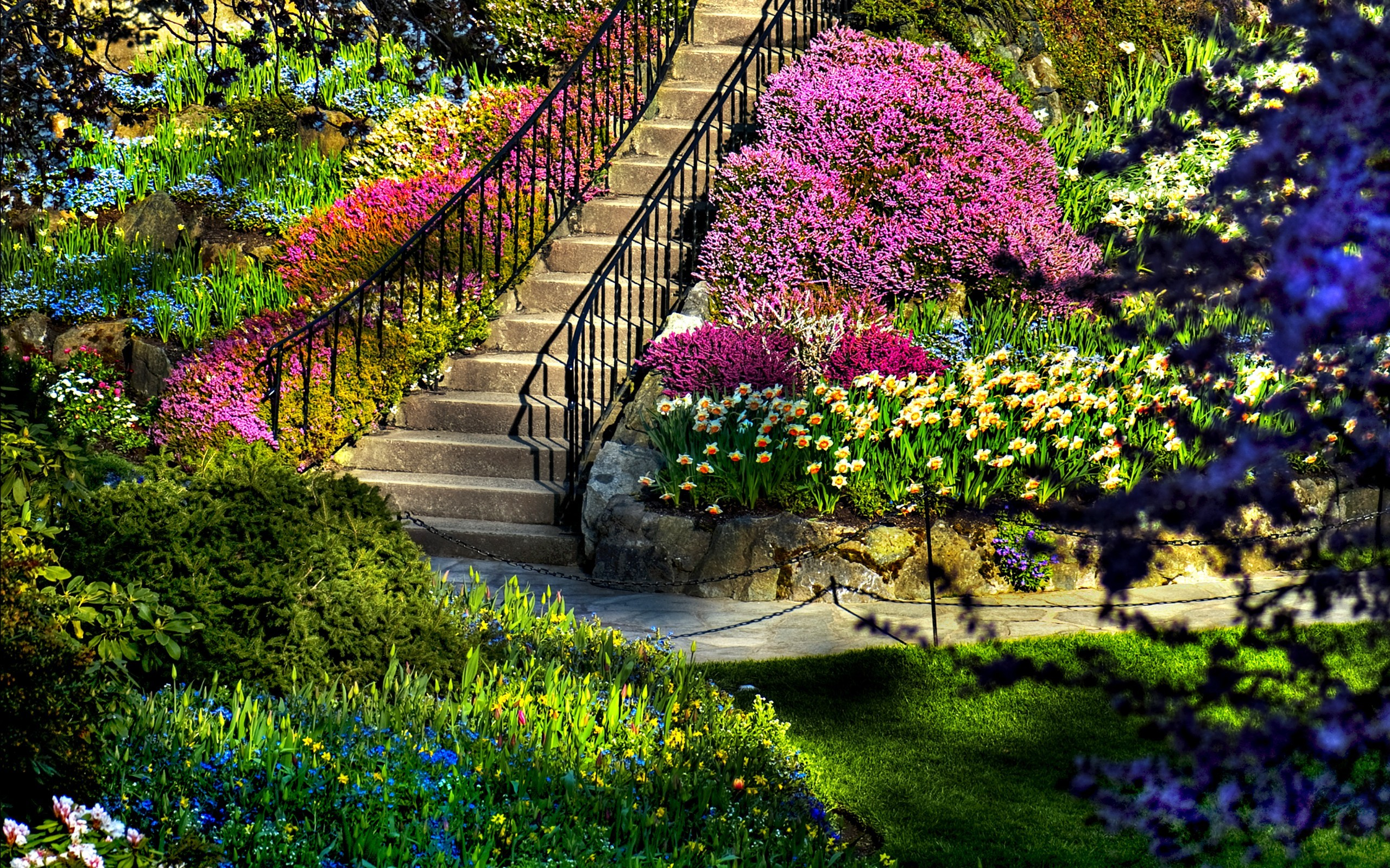 Beautiful Nature Background 56 Images