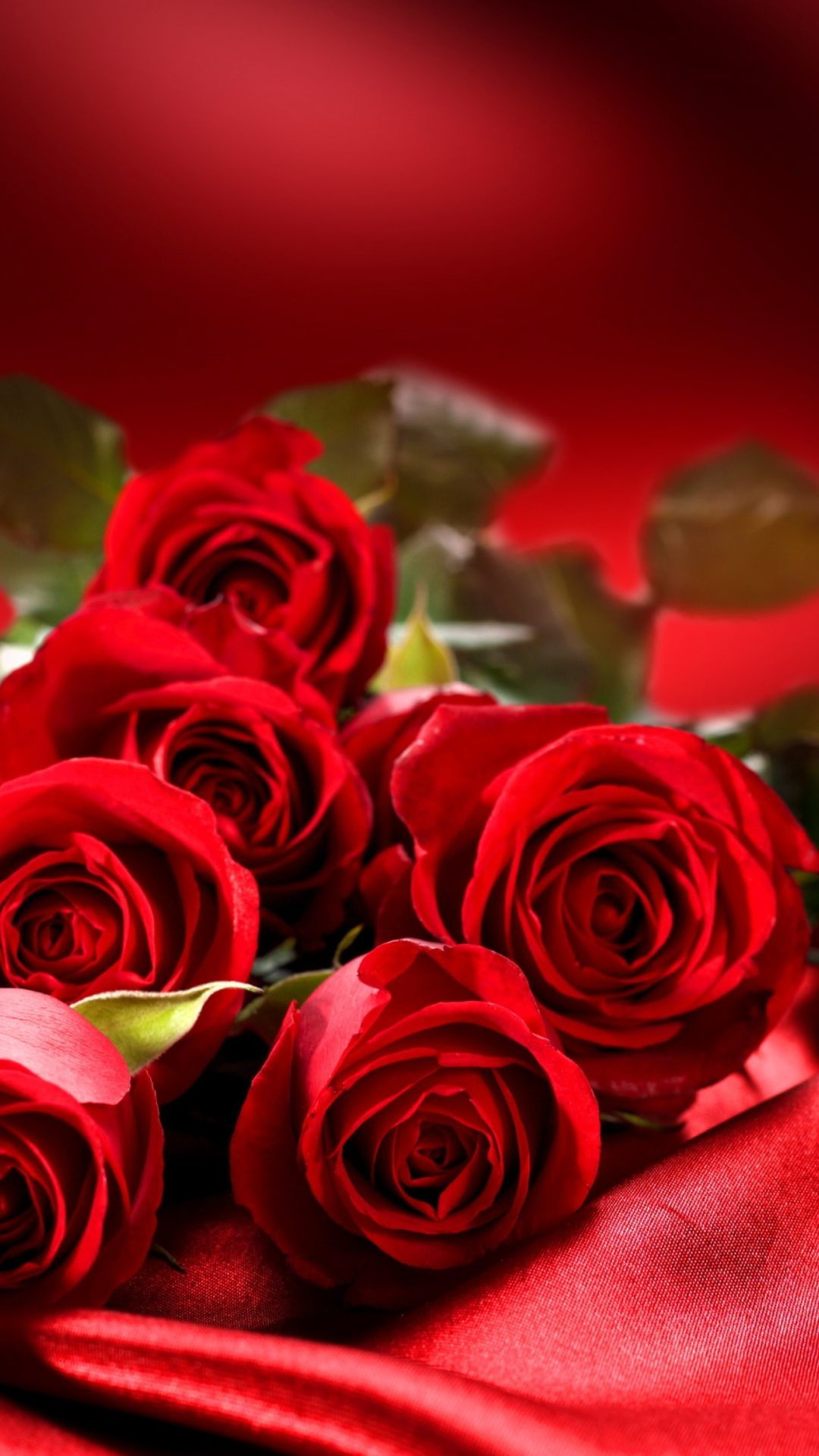 "1080x1920 750x1334 Flowers Red Roses 6 wallpapers (Desktop, Phone, Tablet) - Awesome  ..."">"