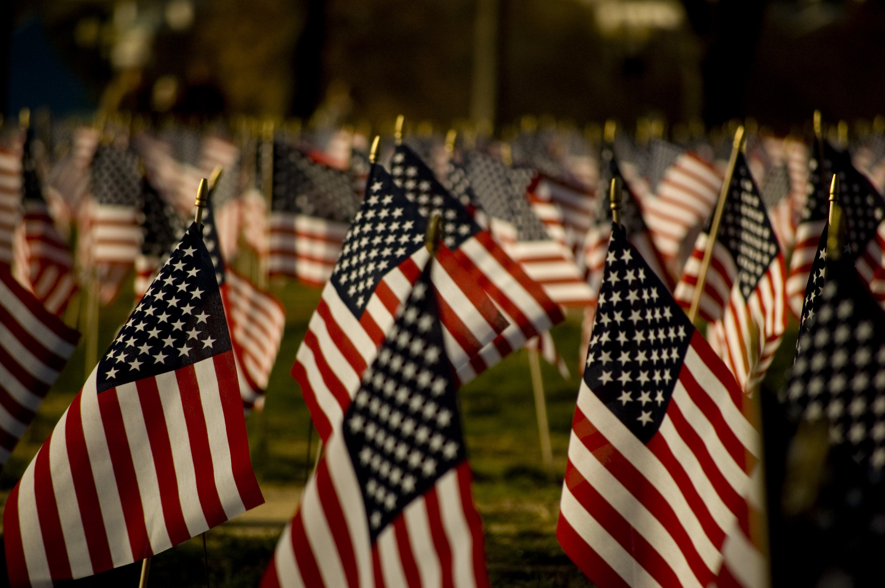 3008x2000 LARL Locations Closed November 12 in Observance of Veterans Day – Lake  Agassiz Regional Library