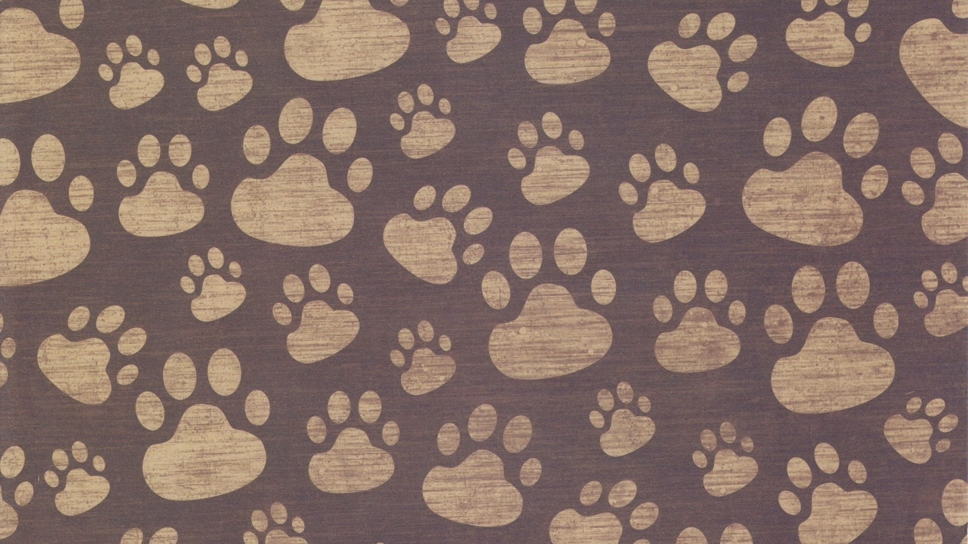 Dog Paws Wallpaper (41+ images)
