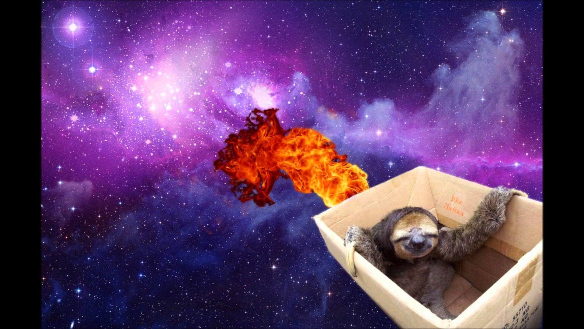 1920x1080 Envoy - Sloths In Space (Original Mix) - YouTube