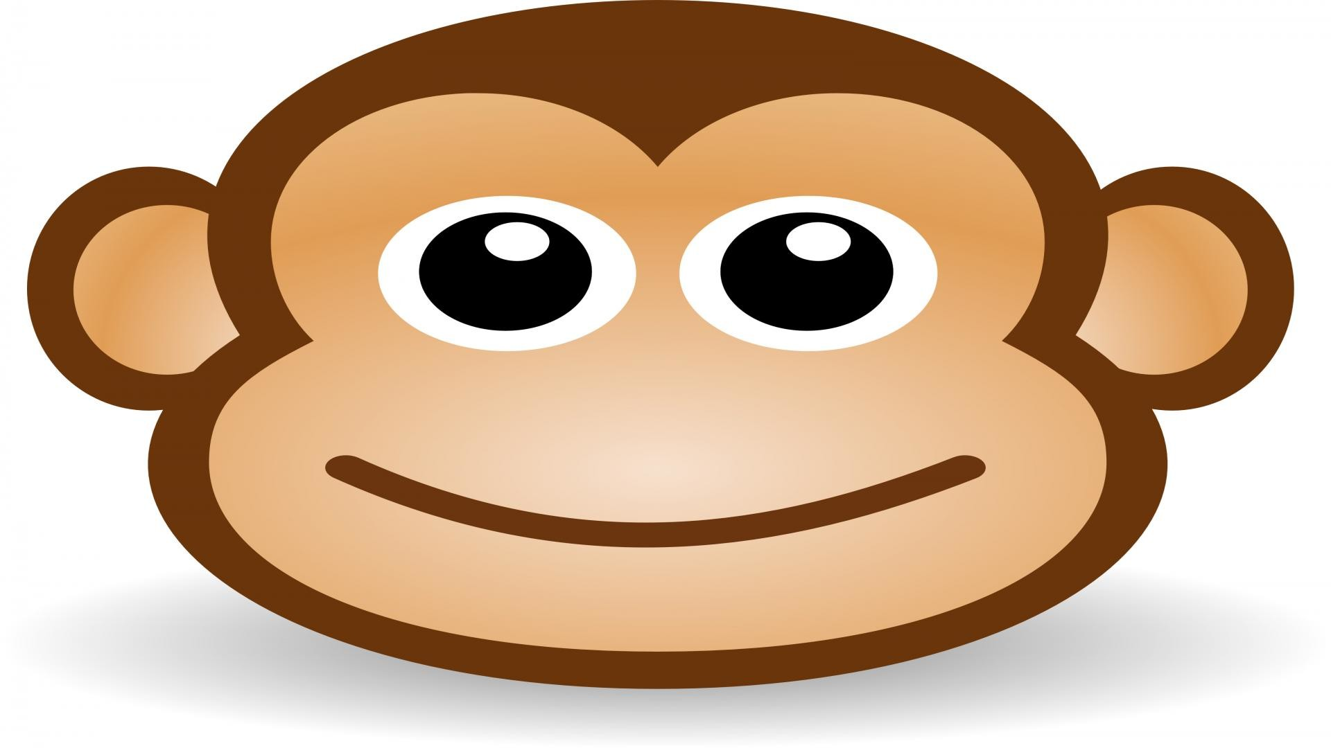 Cute Monkey Wallpapers 47 Images