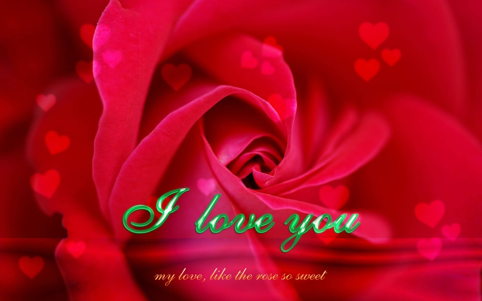 1920x1201 New Red Rose I Love U Quotes Knumathise Red Rose I Love You Wallpaper Images