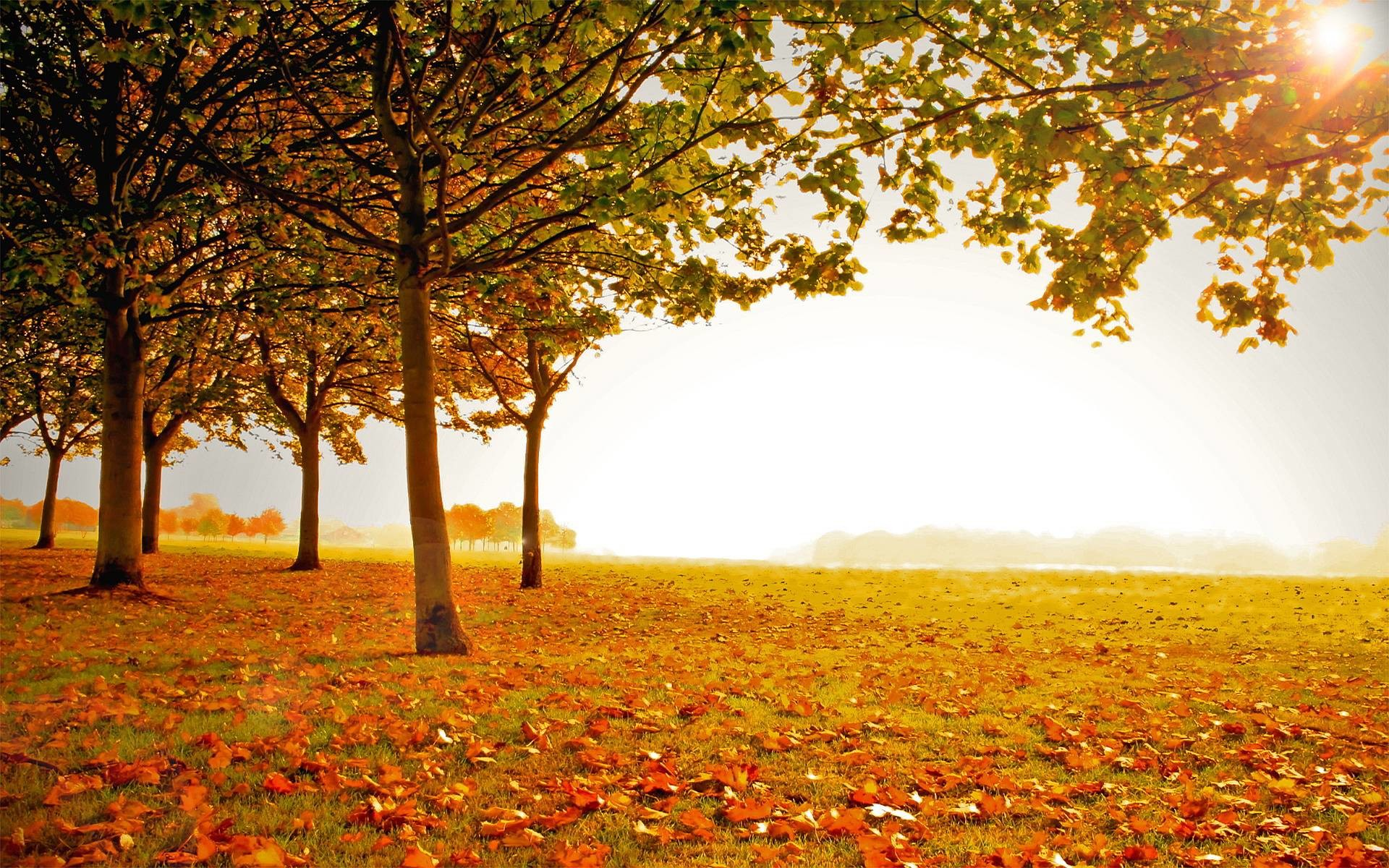 1920x1200 Autumn Landscape Wallpaper Hd 1080P 12 HD Wallpapers | Eakai.
