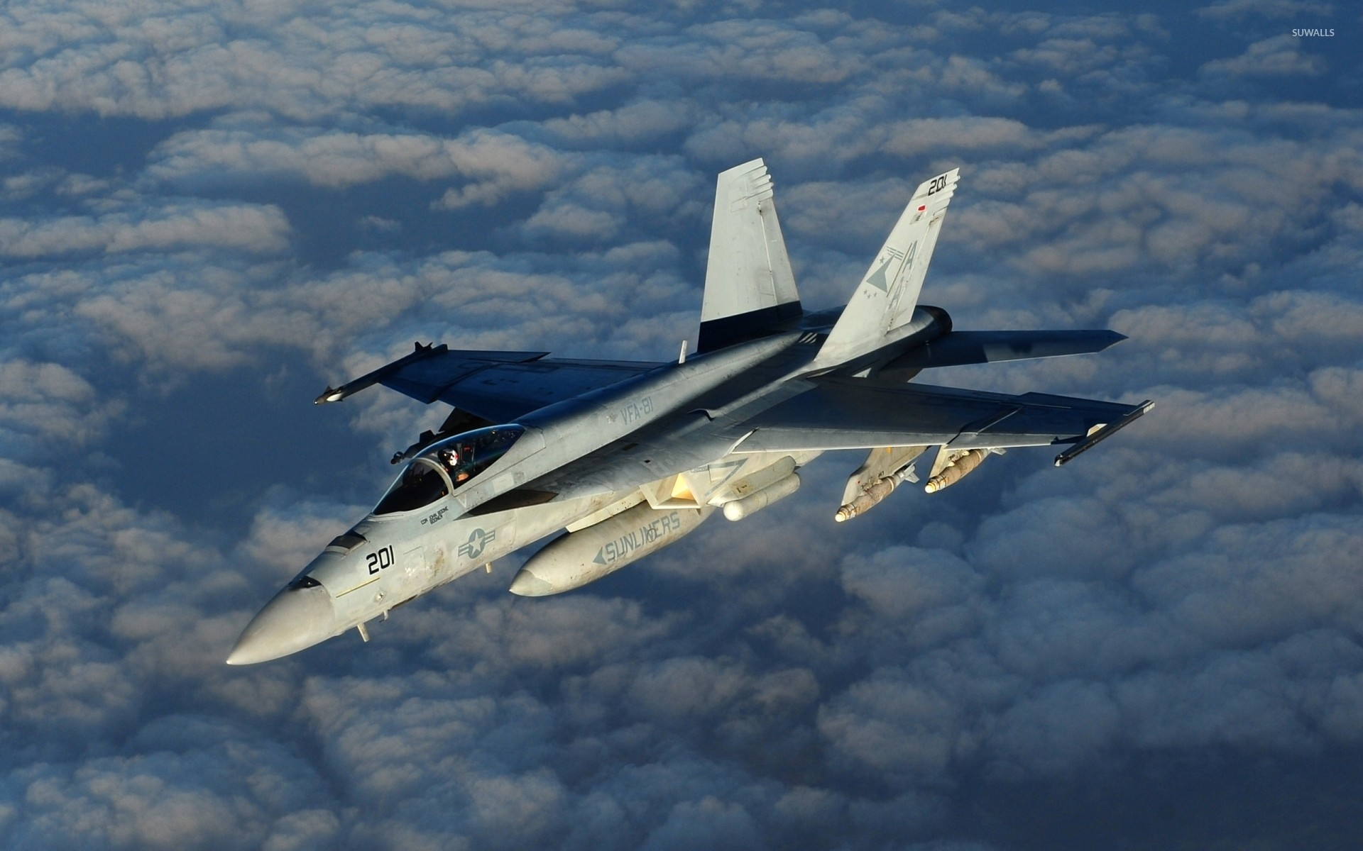 1920x1200 Boeing F/A-18E Super Hornet above the clouds wallpaper