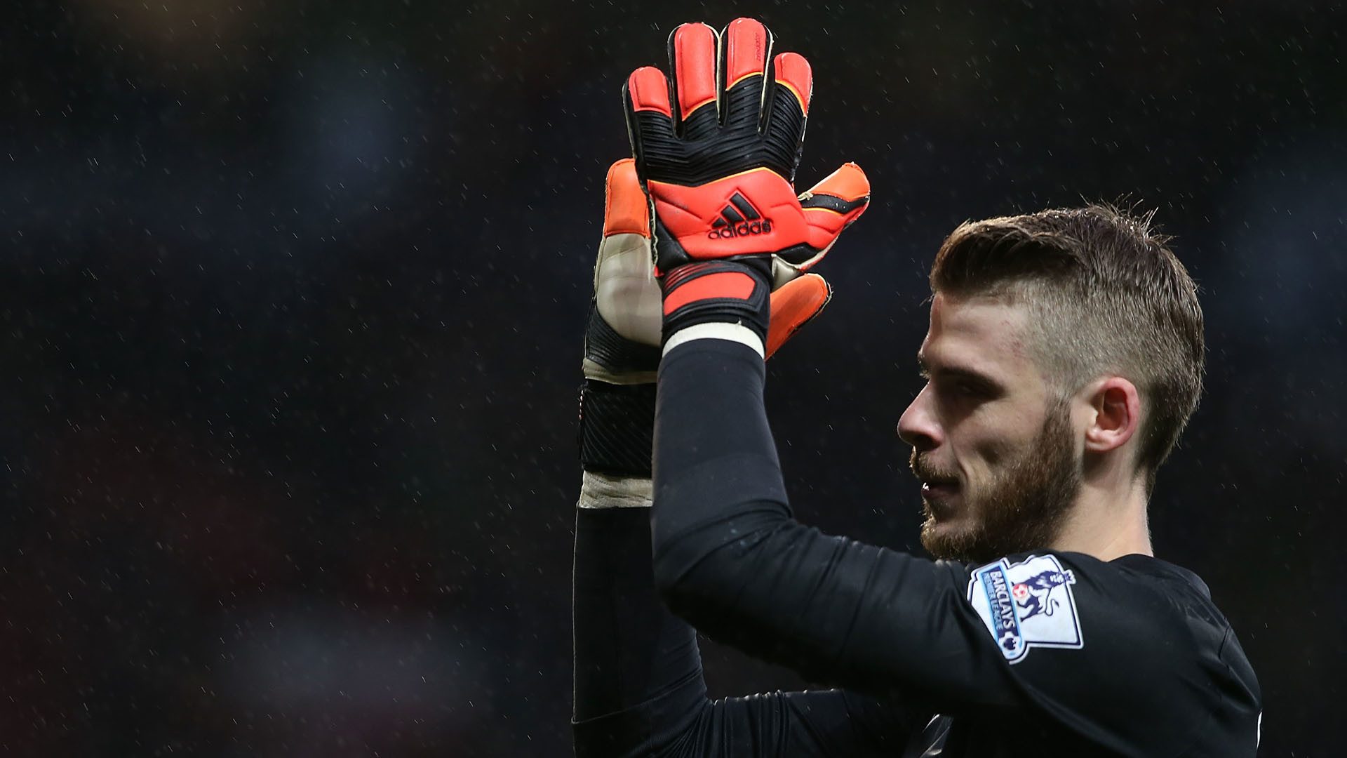 David De Gea Wallpapers (81+ Images