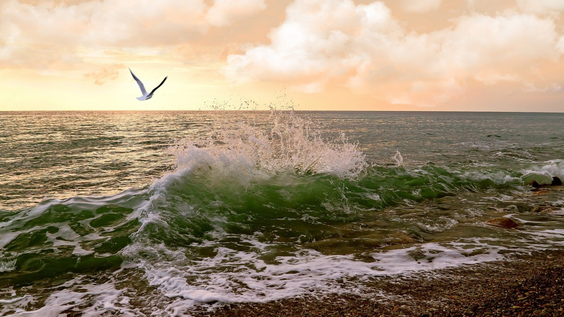 1920x1080 Preview wallpaper sea, waves, surf, seagulls, sky