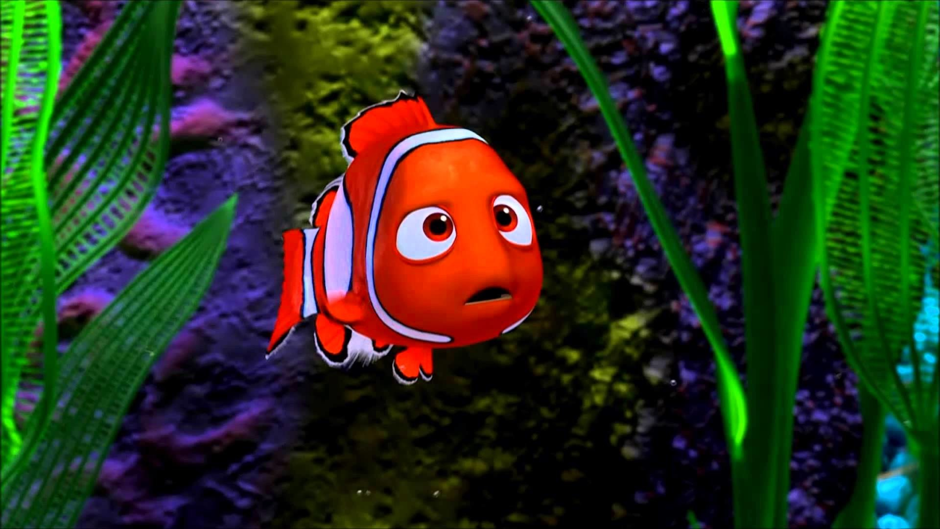 HD Nemo Wallpapers (61+ Images