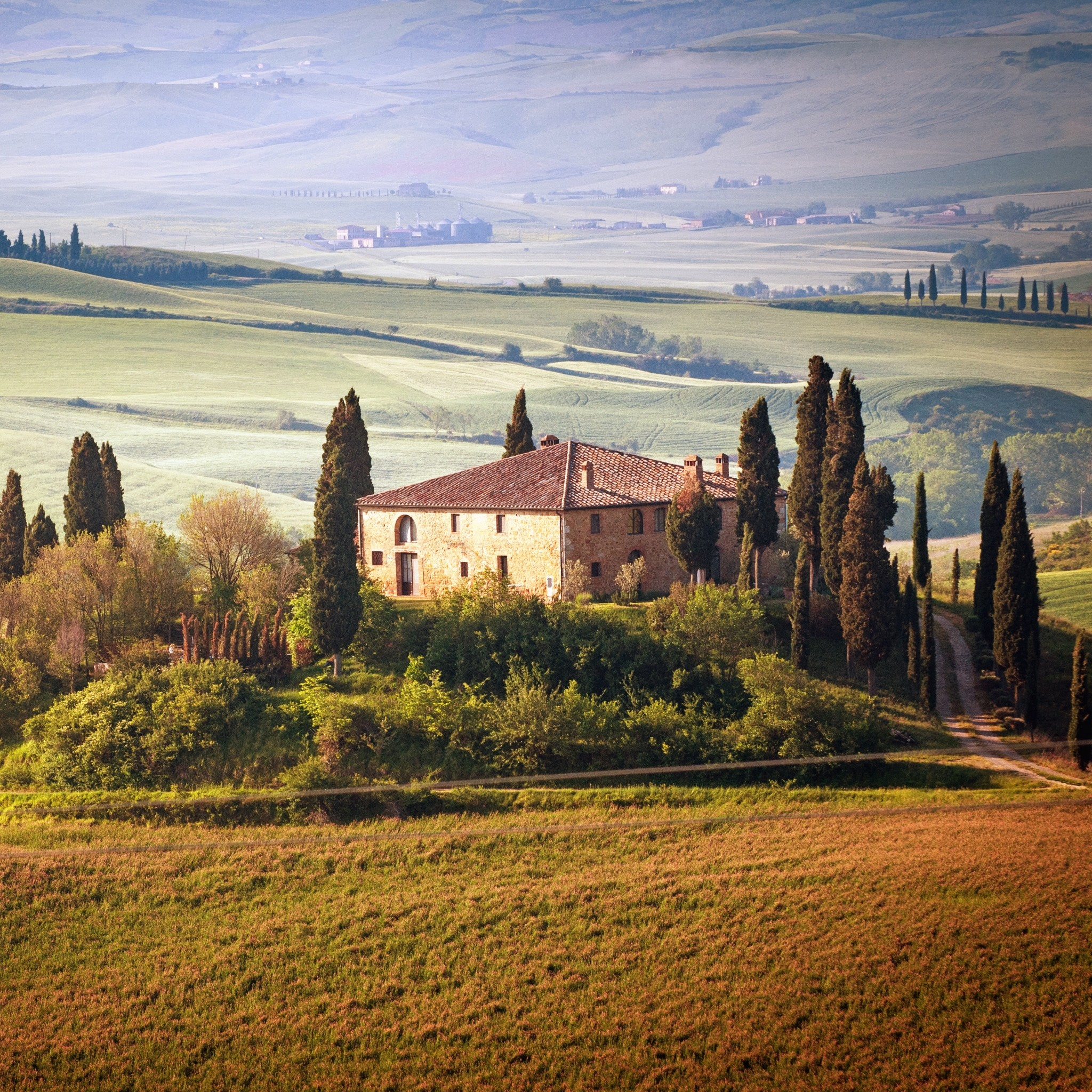 2048x2048 Preview wallpaper italy, tuscany, summer, countryside, landscape, nature,  trees,