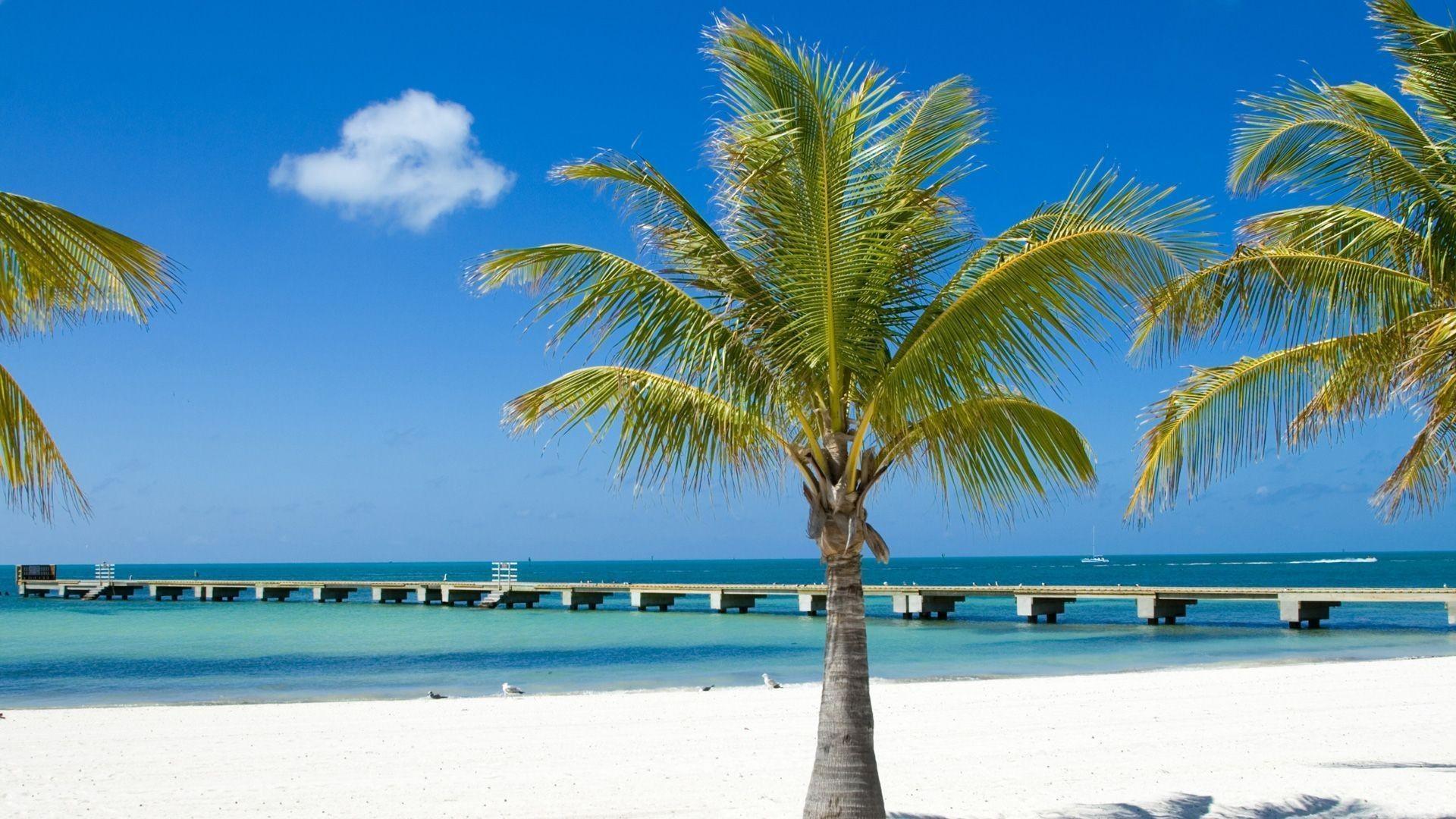 Famous Beach In Florida Keys
