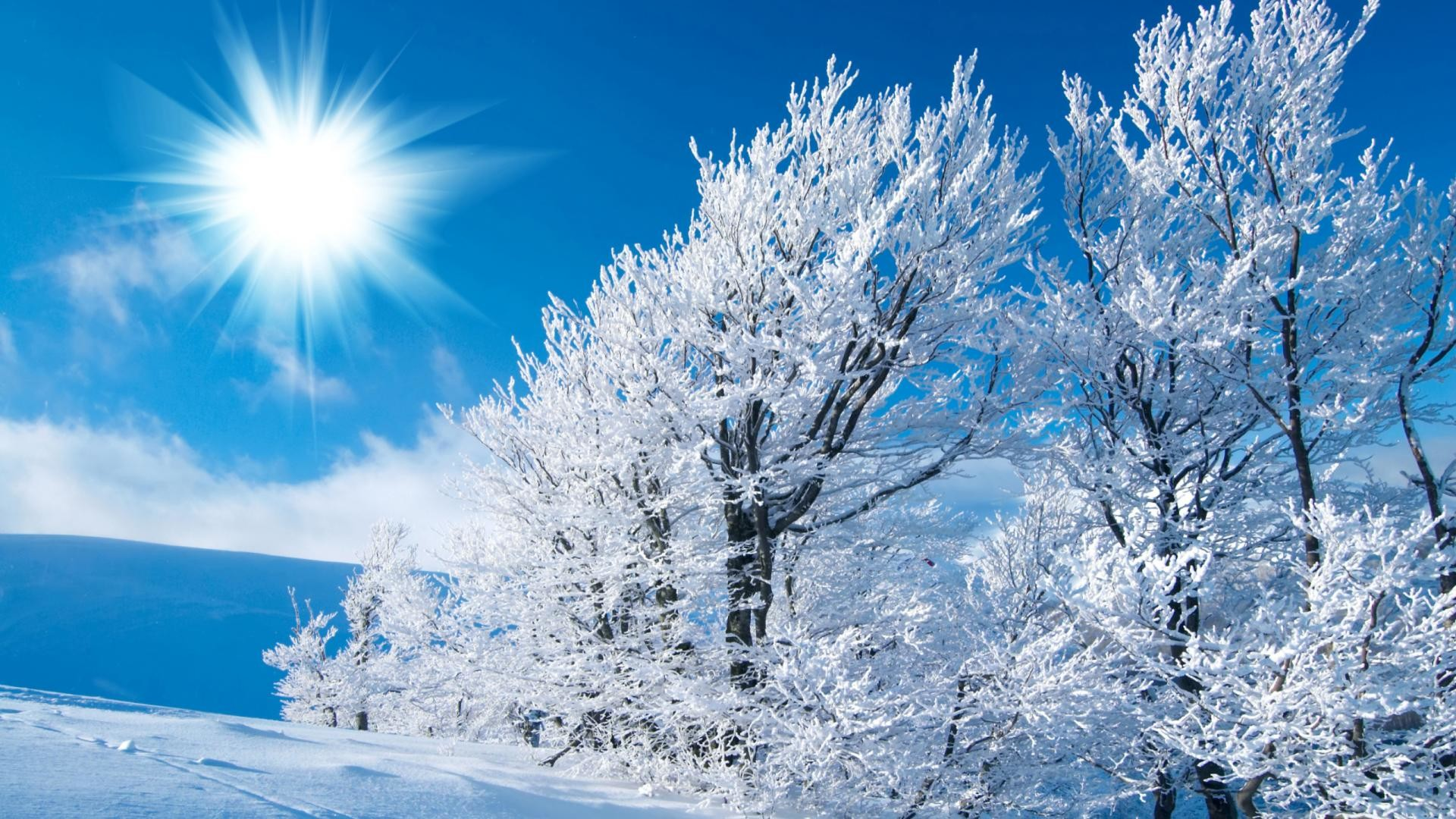winter pictures for desktop background (69+ images)