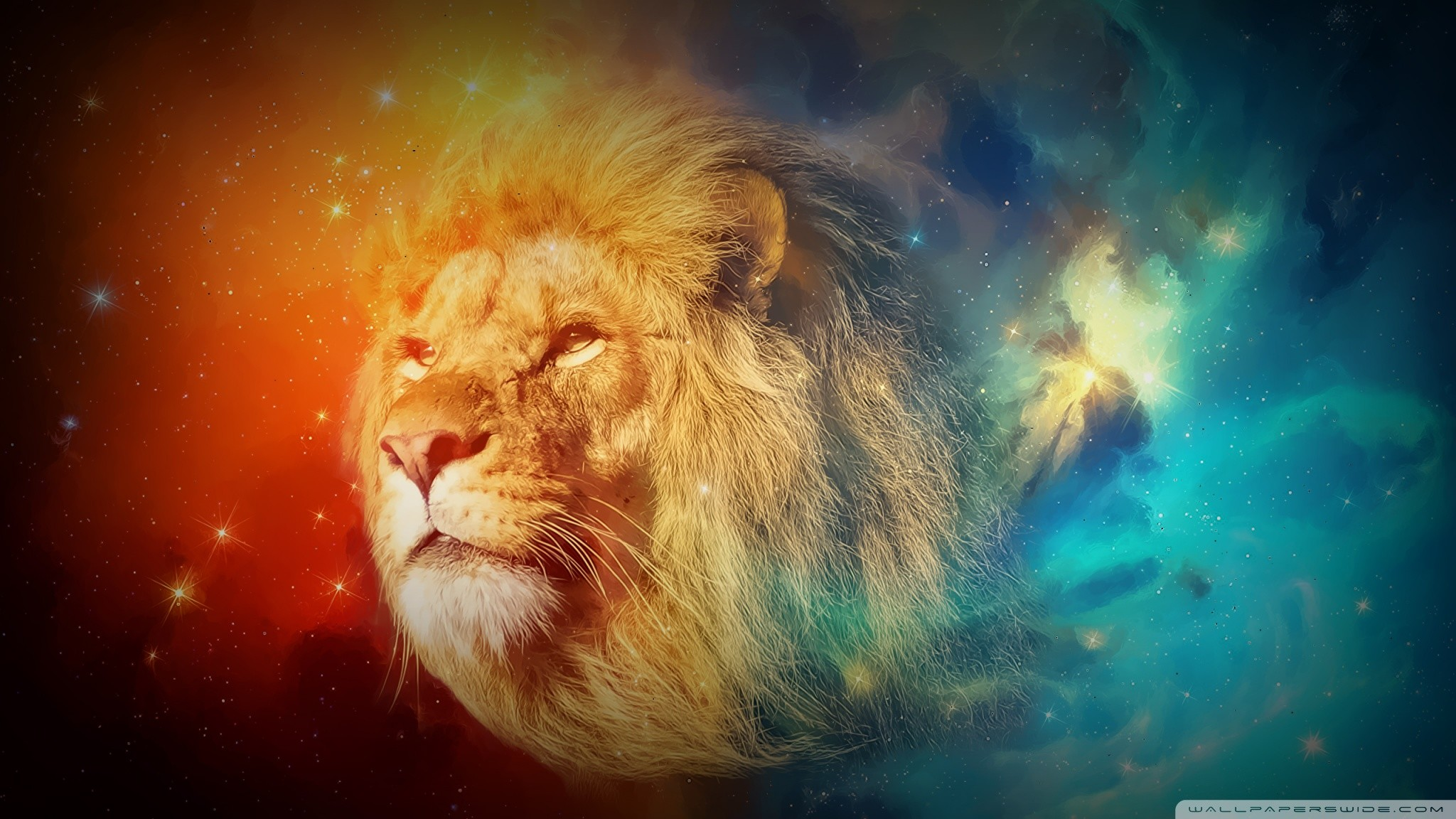 Rainbow Lion Wallpaper (57+ Images
