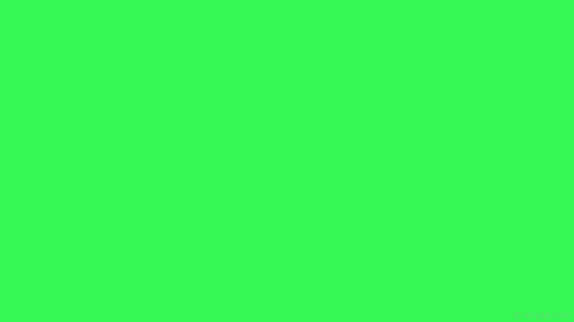 green plain wallpaper download labzada wallpaper