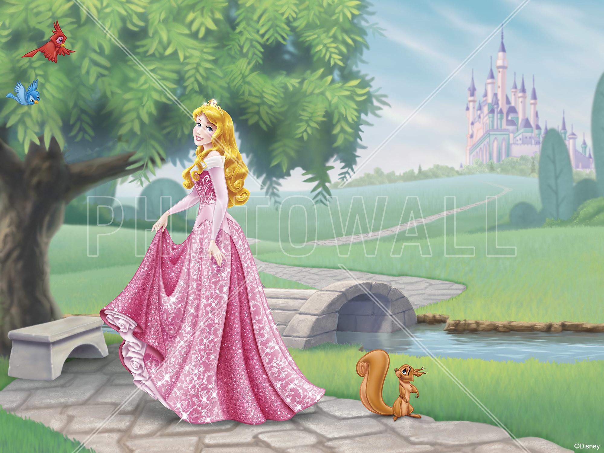 Rapunzel Bedroom Princess Aurora Wallpaper 58 Images