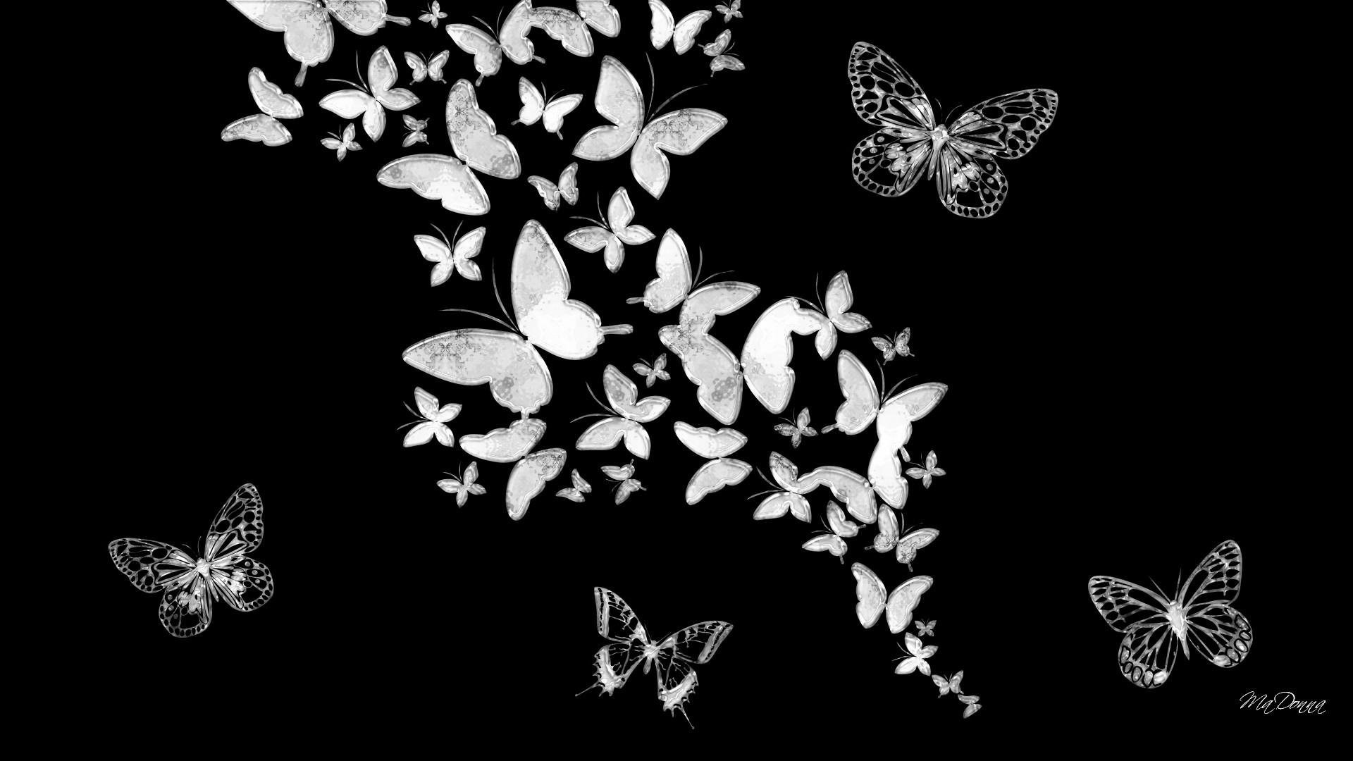 1920x1080 wallpaper.wiki-Butterfly-black-and-white-hd-wallpapers-