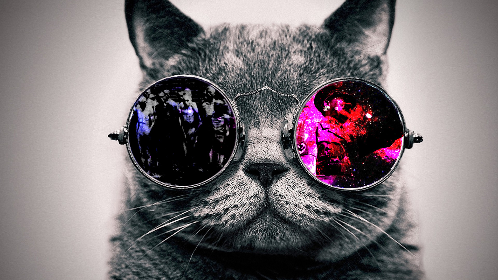 Epic Cat Wallpaper (73+ Images