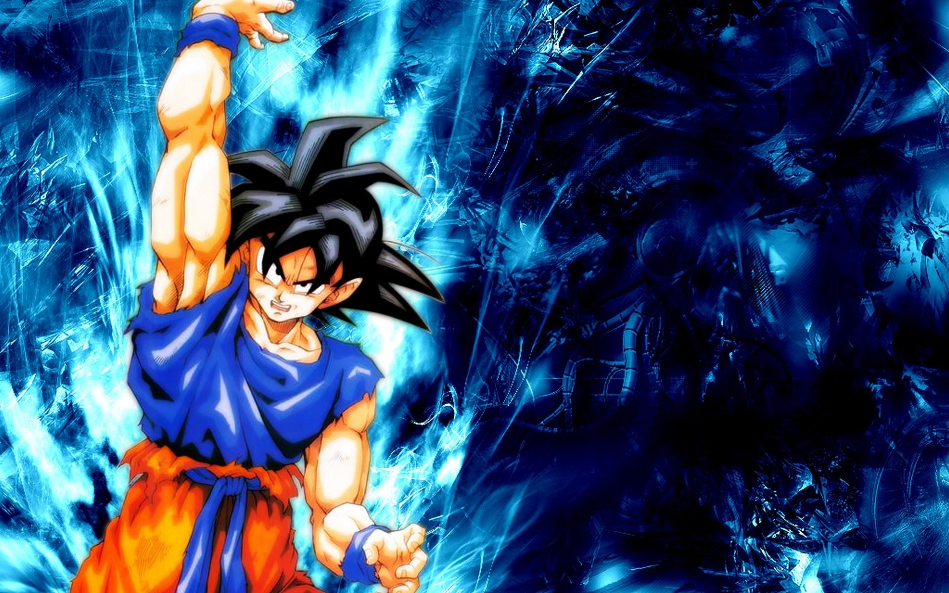 1920x1080 Super Saiyan God HD Wallpaper Goku