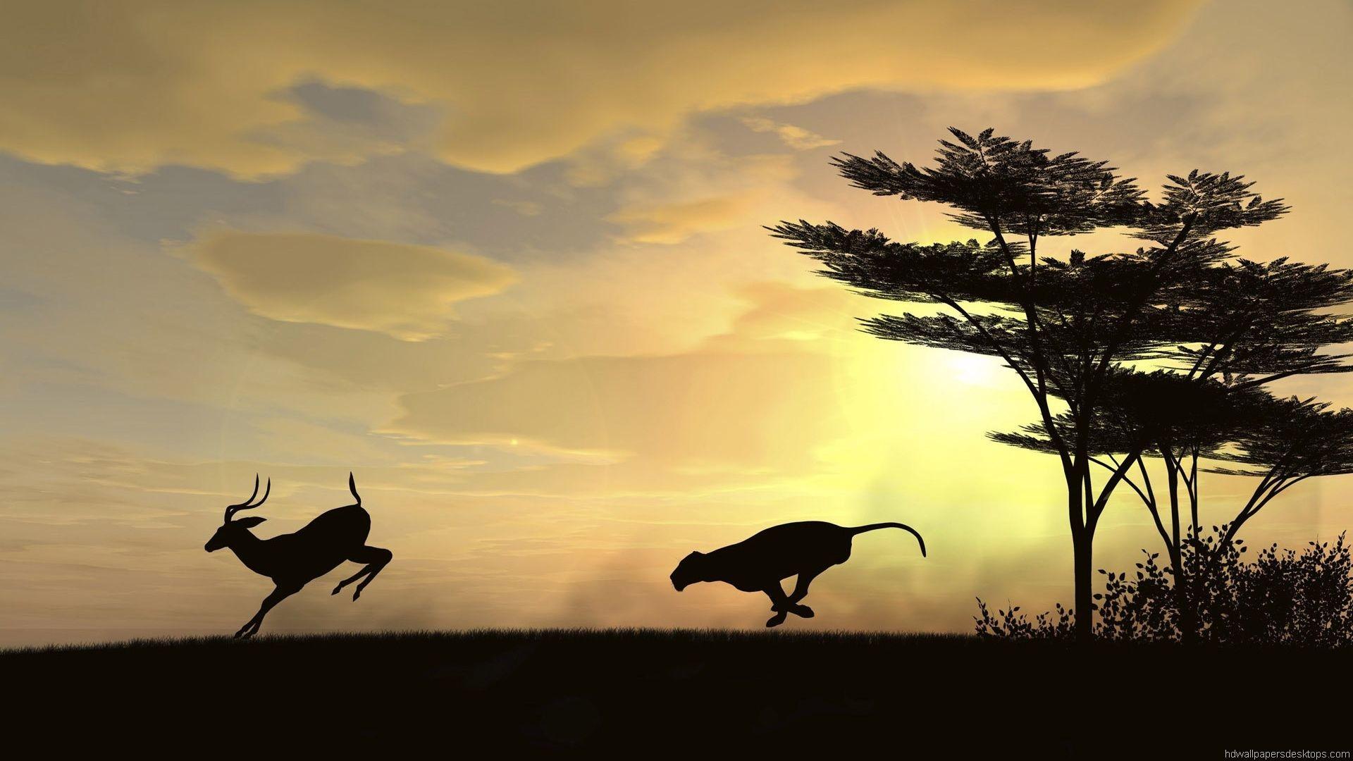 Collection Of Best Animal Wallpapers: Animal Desktop Wallpaper (69+ Images