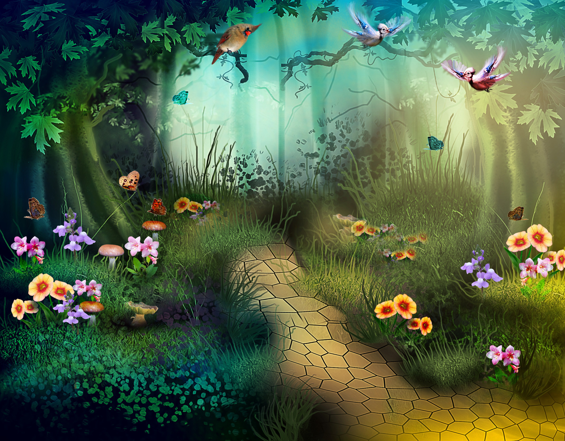 Enchanted Forest Background 60 Images