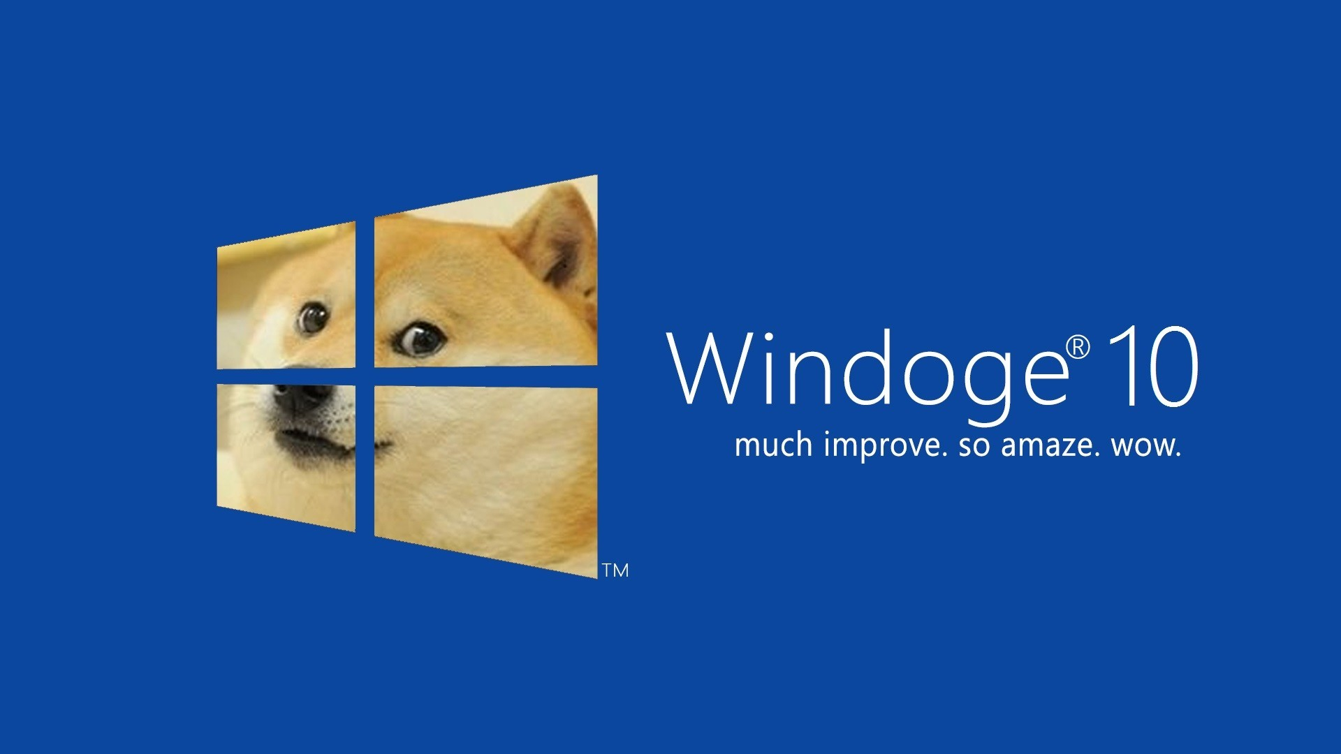 Windows 10 funny wallpaper 70 images for Best quality windows