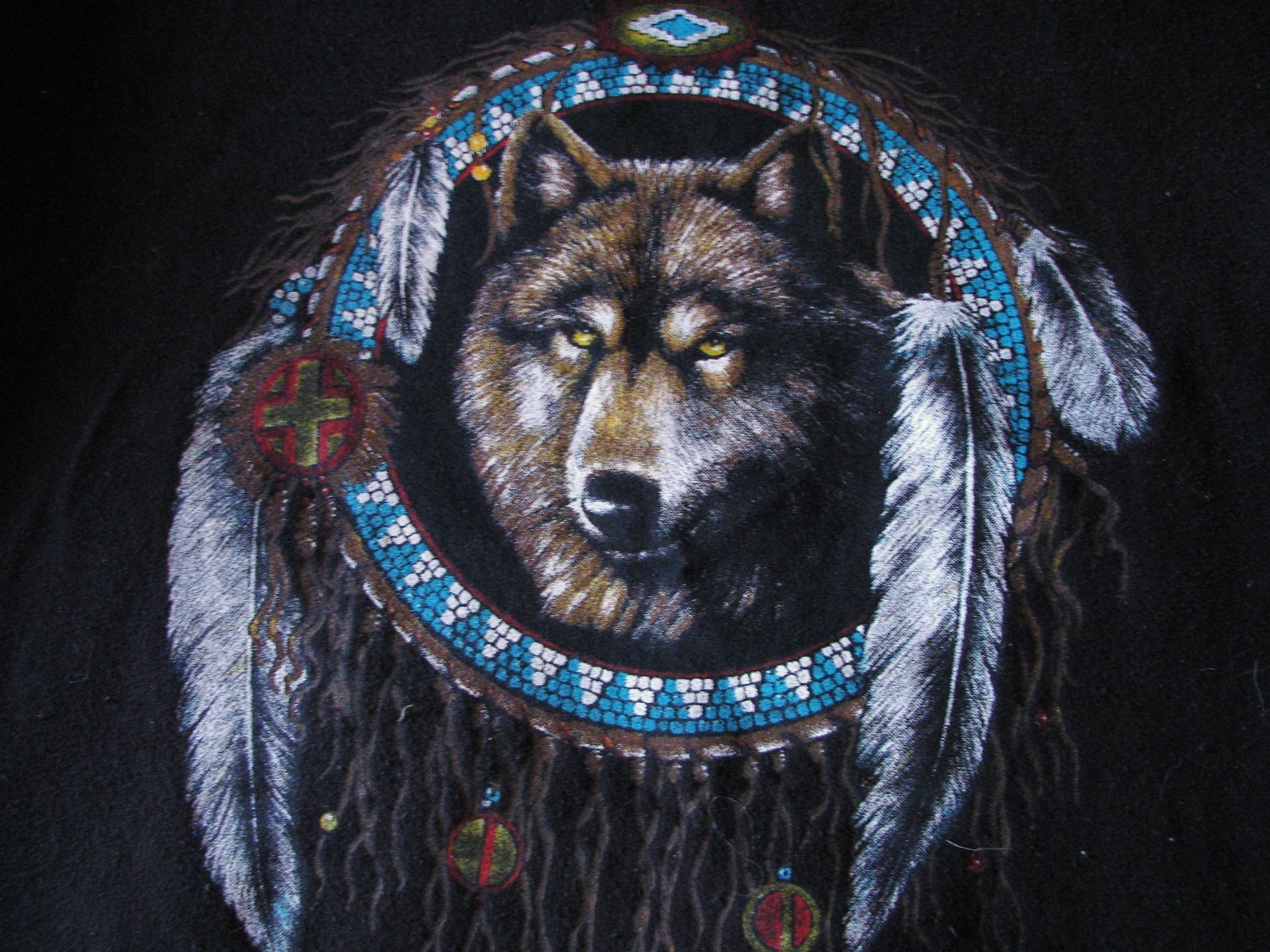 Native American Screensavers And Wallpaper 64 Images