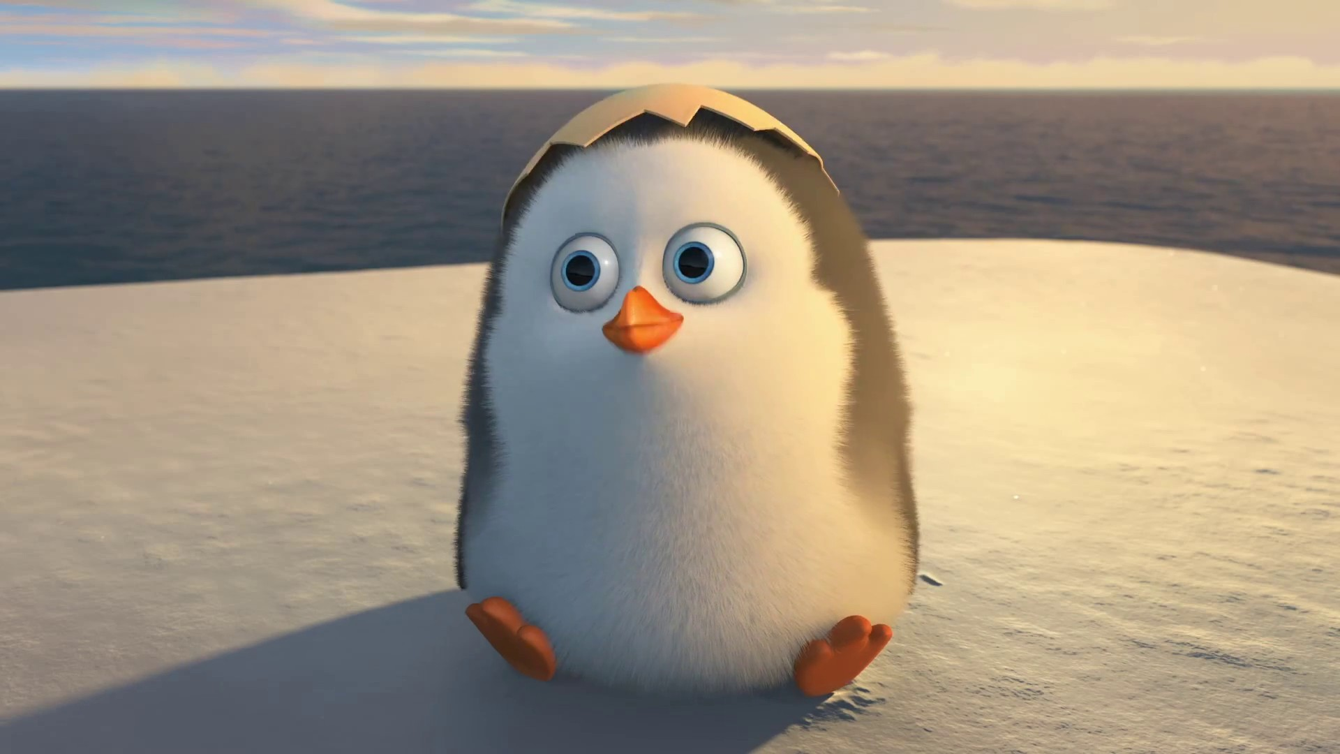 1920x1080 The Penguins Of Madagascar Movie 2014 Cute Baby