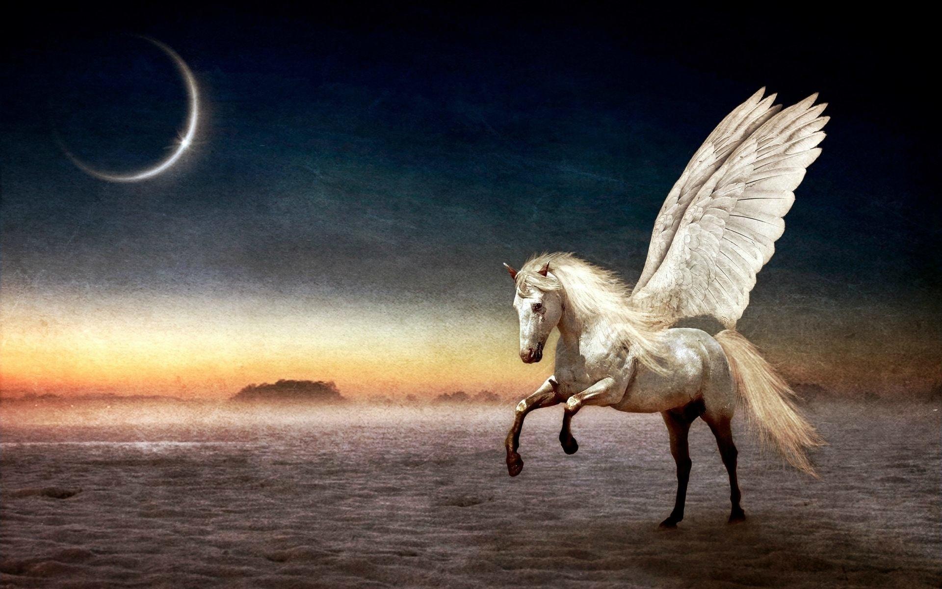 Fire Horse Wallpaper HD (61+ images)