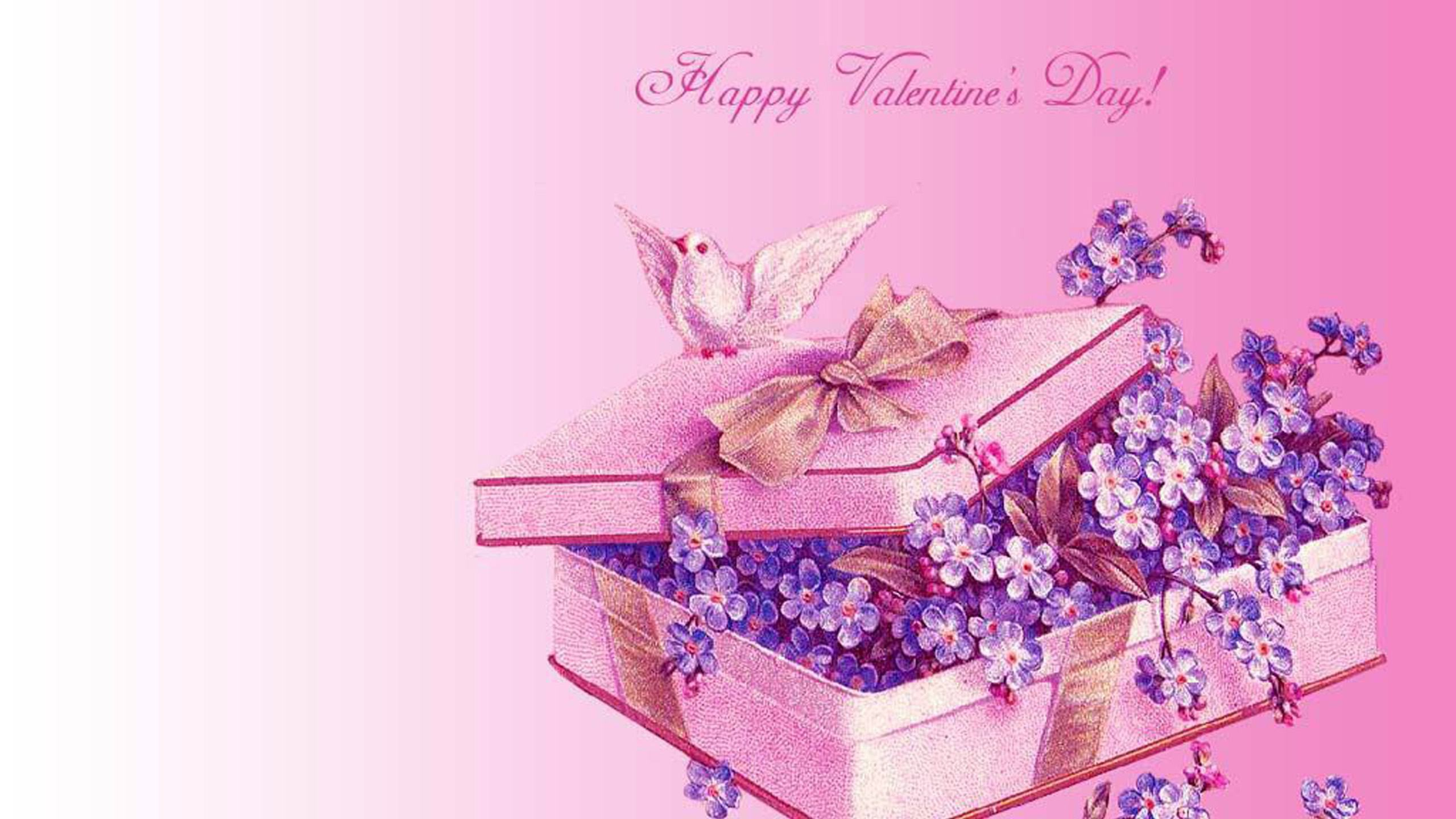 2560x1440 Happy Valentines Day Images HD.