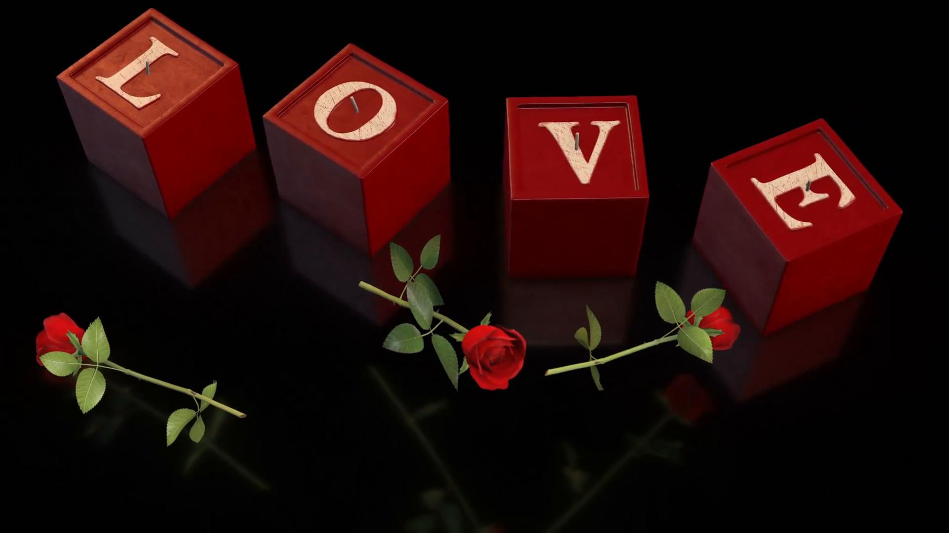 2560x1600 Red Rose Black Background Wallpaper In 2560Af 1600 Resolution Hd