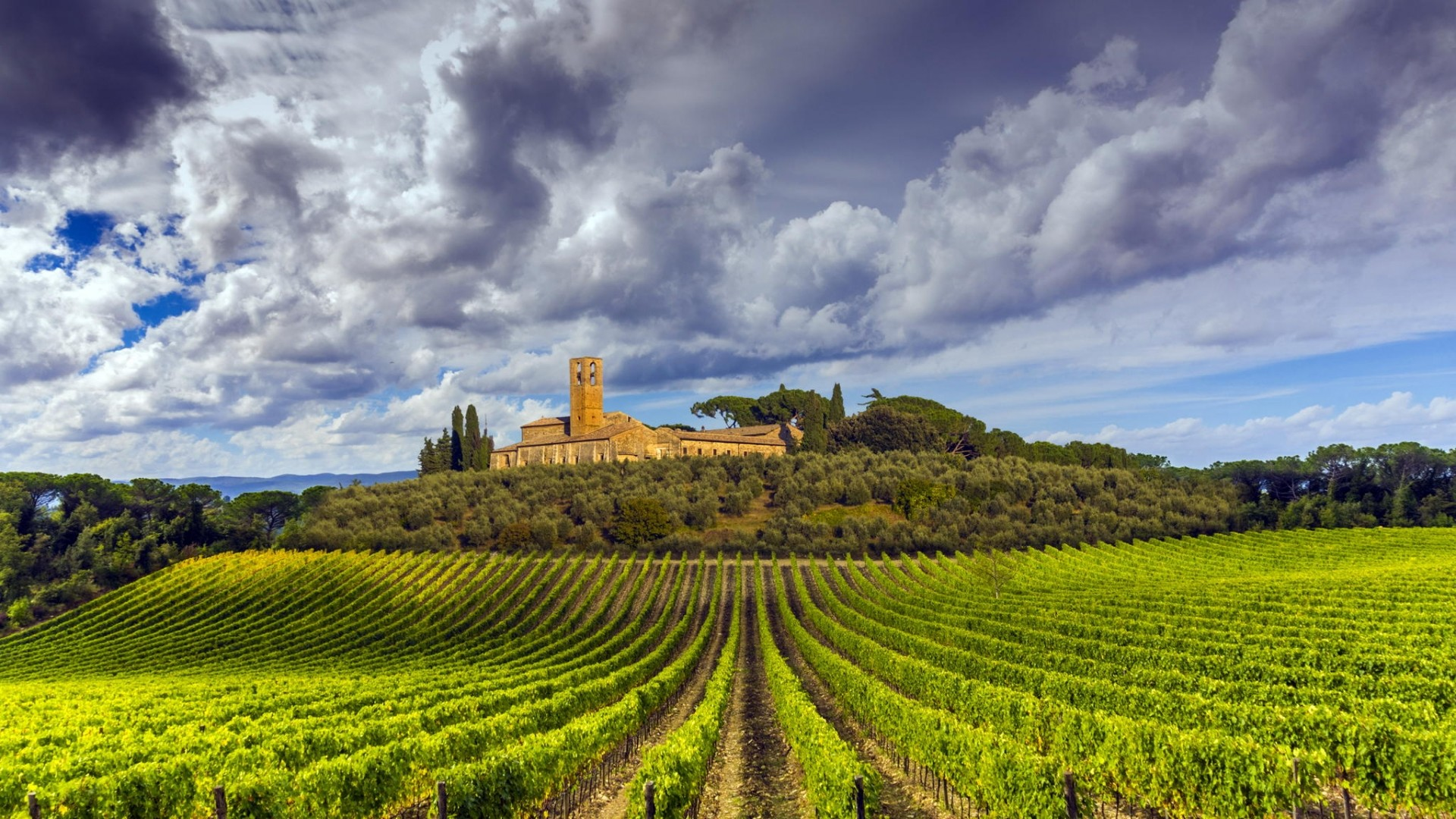 1920x1080 Tuscany Vineyard wallpaper 2048x1536. Download resolutions: Desktop:   ...