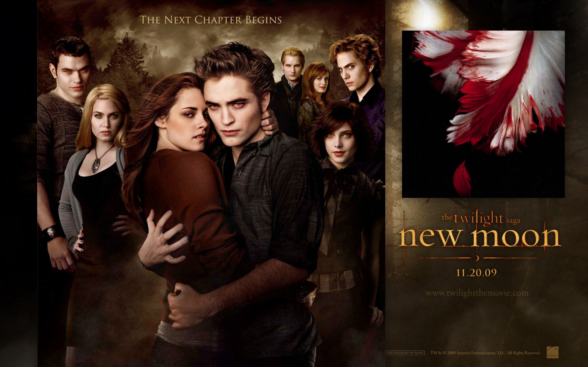 1920x1200 Published December 28, 2009 at 1920 × 1200 in Over 180 Twilight and New  Moon Saga Wallpapers ...