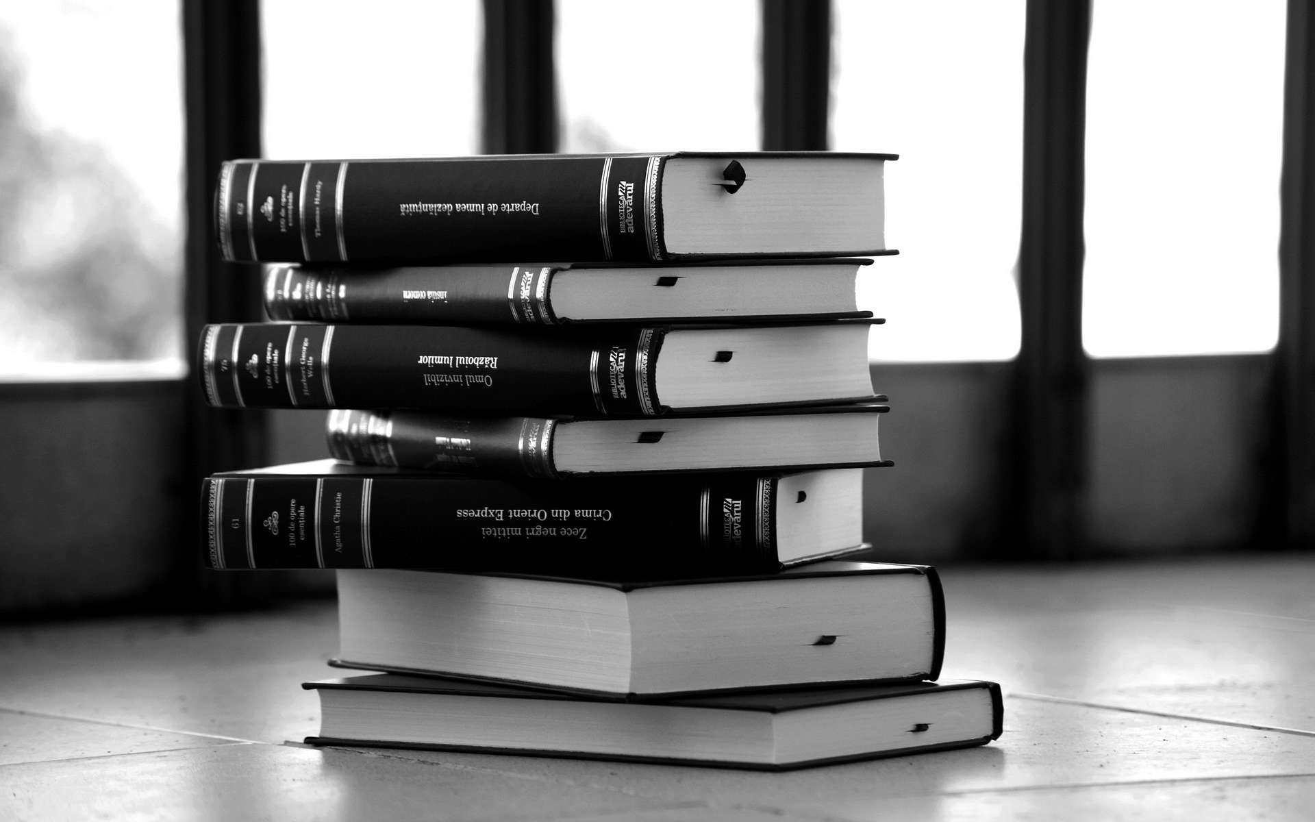 1920x1200 Black & White Books. Into the Forest