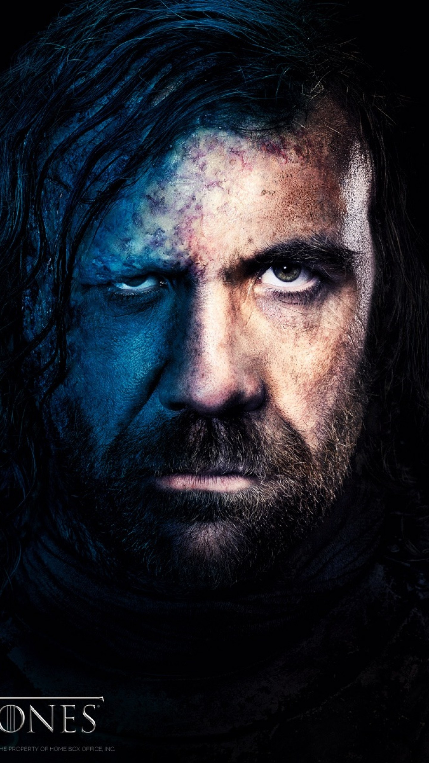 1440x2560 Preview wallpaper game of thrones, rory mccann, sandor clegane