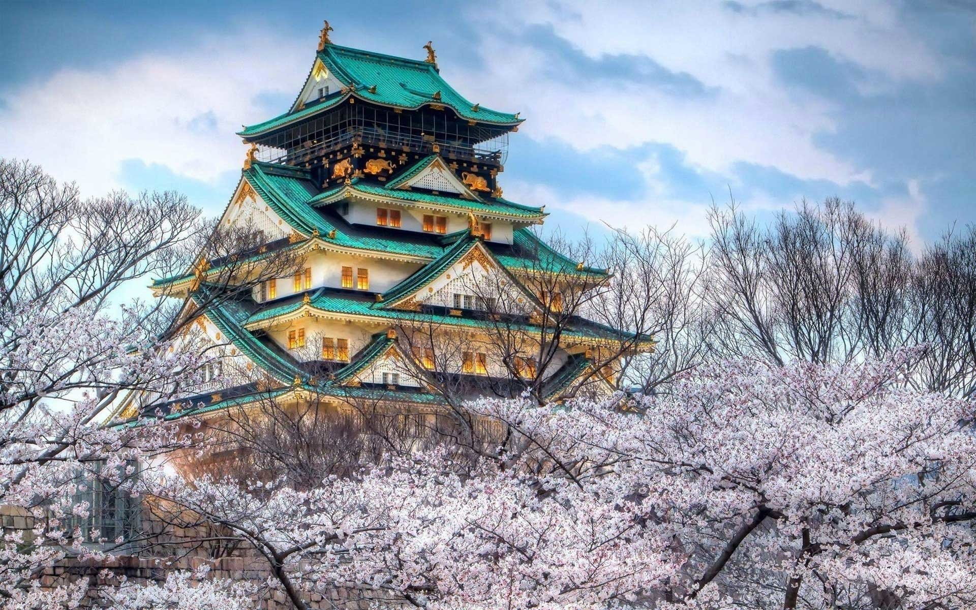 1920x1200 Man Made - Osaka Castle Architecture Castle Man Made Japan Cherry Blossom  Wallpaper