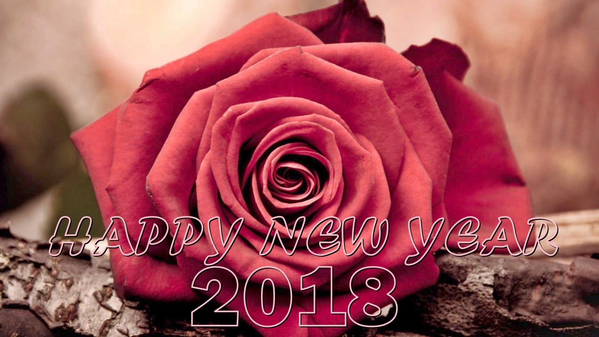 1920x1080 2018 Happy New Year Rose Flower Wallpapers