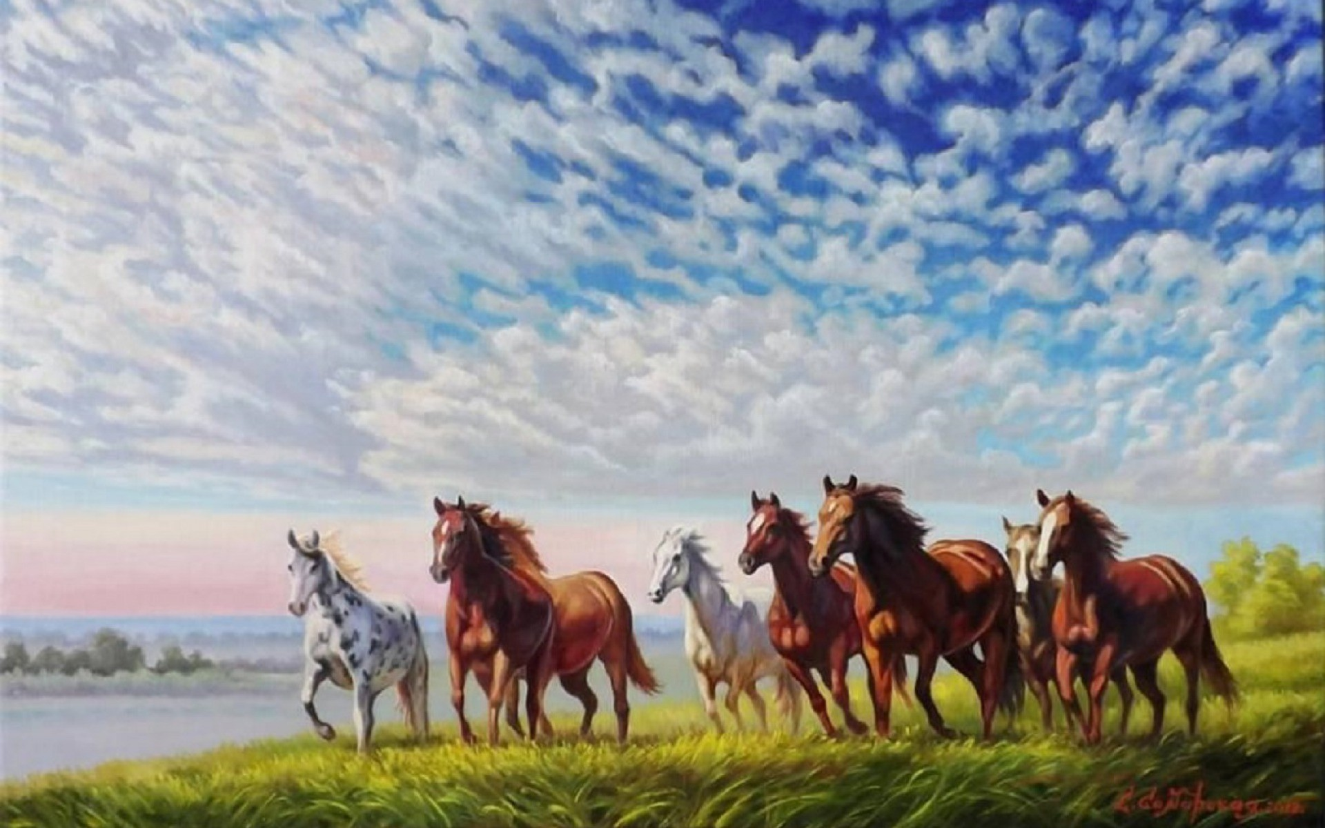 1920x1200 Wild Horses Running Field wallpapers and stock photos
