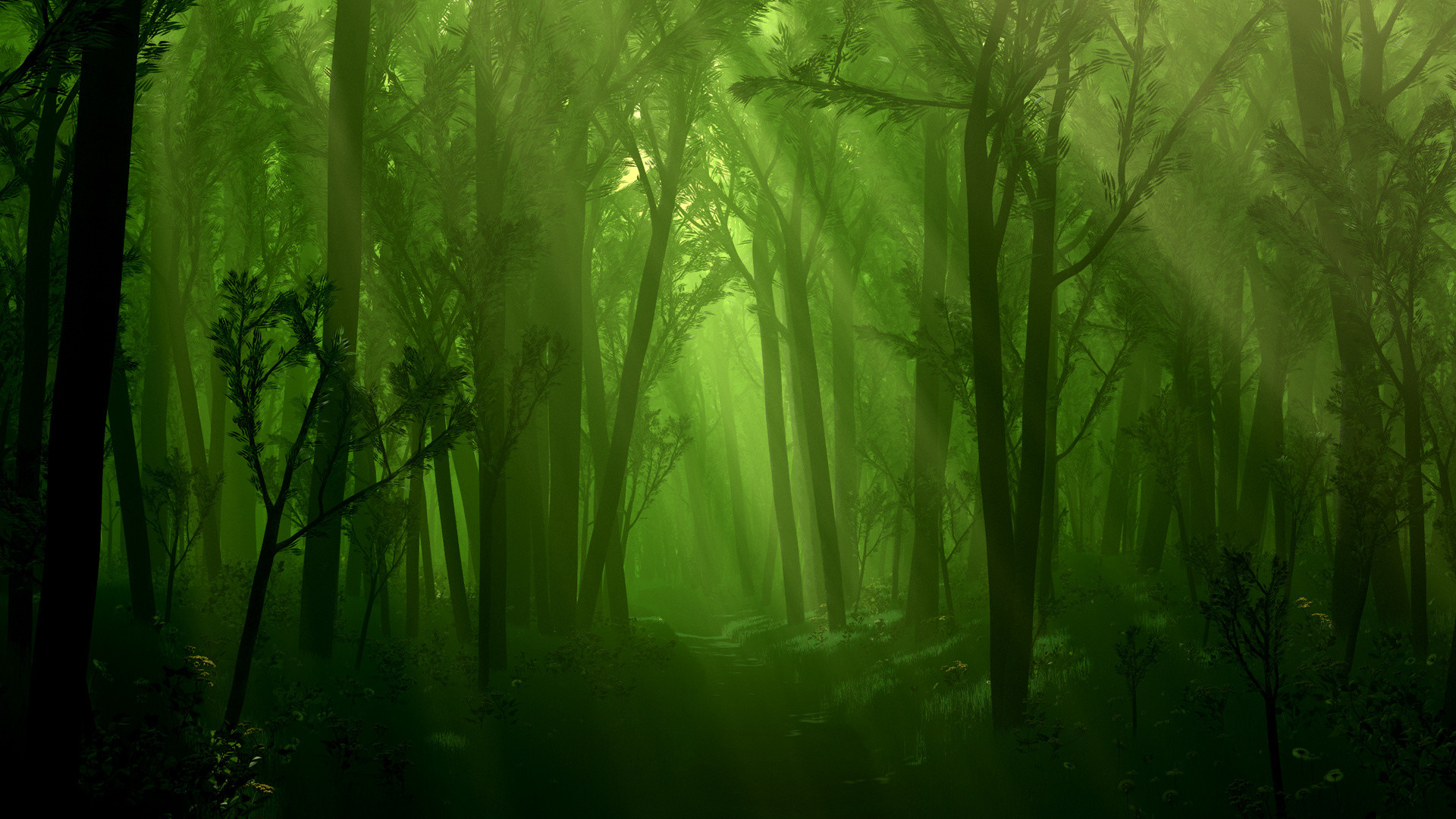 1920x1080 Dark Forest Fantasy Wallpaper Wallpaper