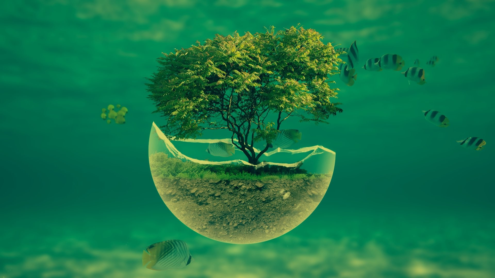 1920x1080 ... 1188_3d_abstract -underwater-tree-widescreen-hd-abstract- desktop-wallpaper ...
