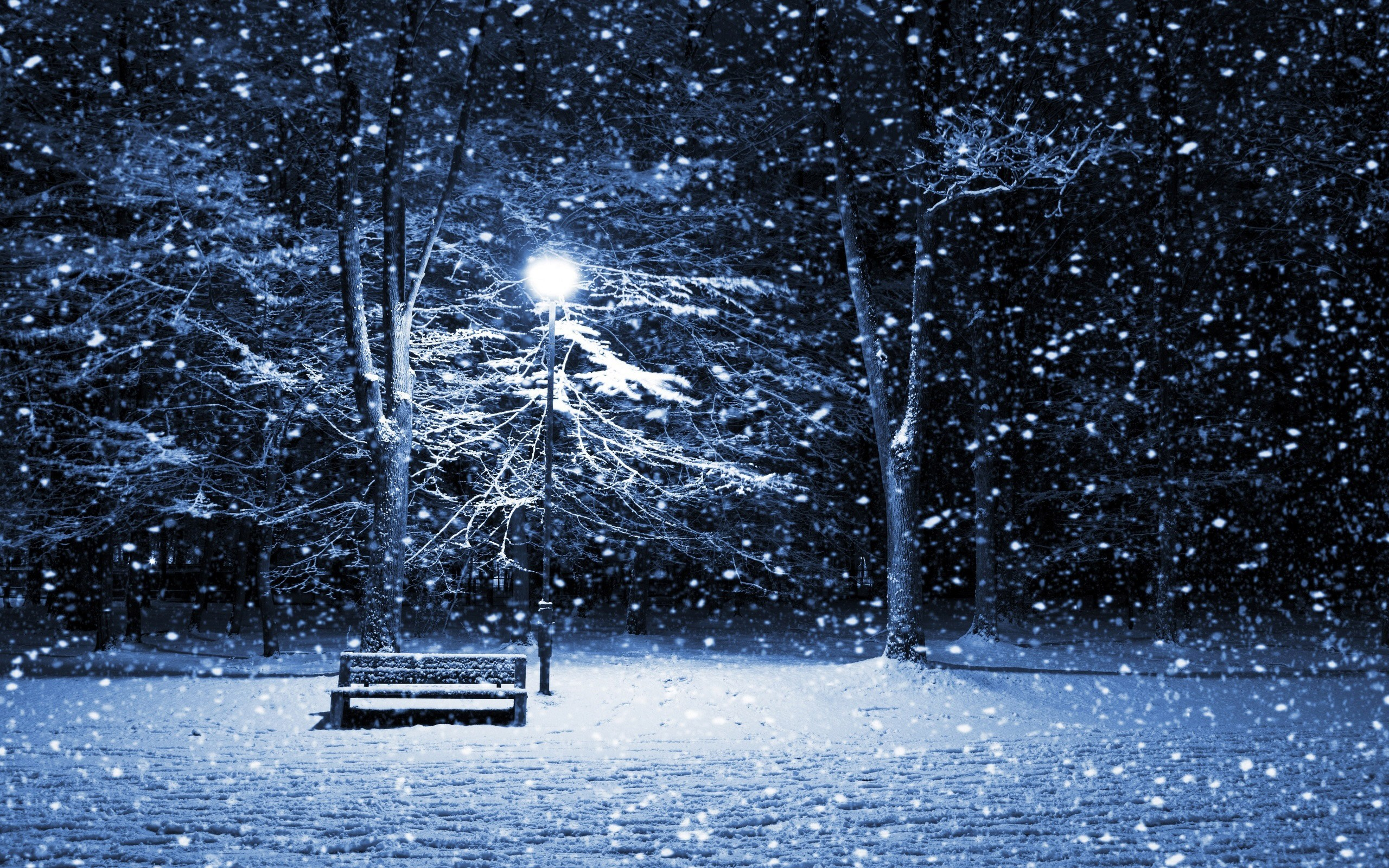 2560x1600 snow wallpaper bench. Â«Â«