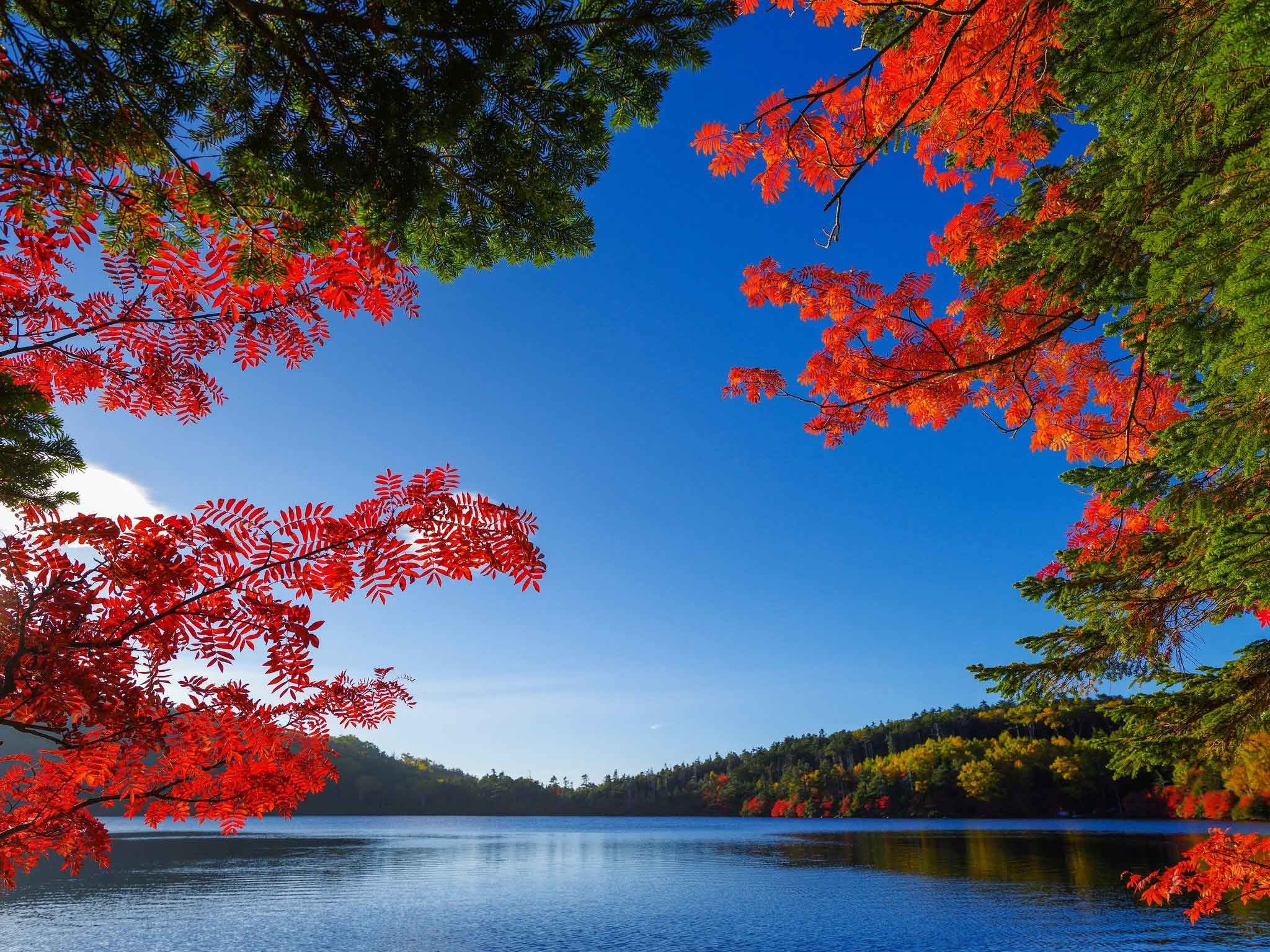 2048x1536 Lakes Fall Lake Autumn Best Nature Wallpapers With Quotes