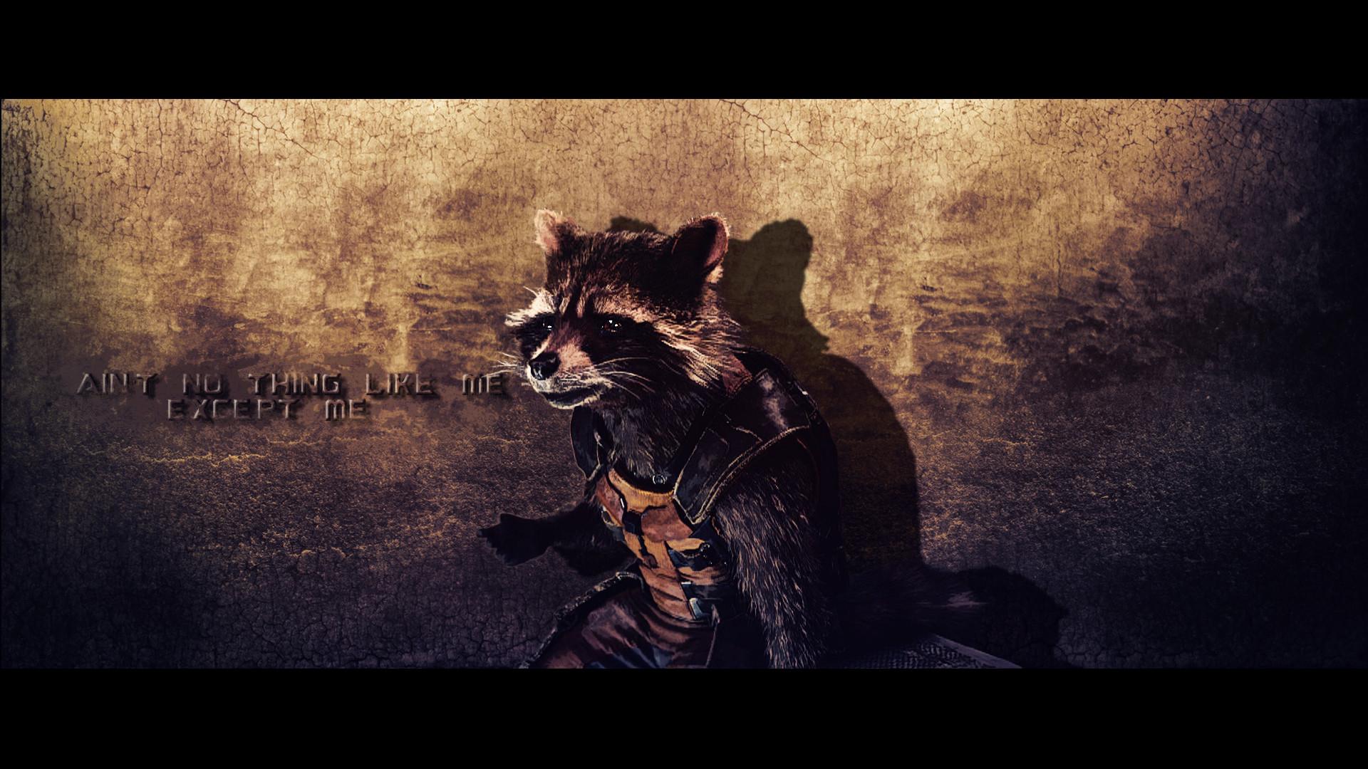 Hd rocket raccoon wallpaper 67 images - Rocket raccoon phone wallpaper ...