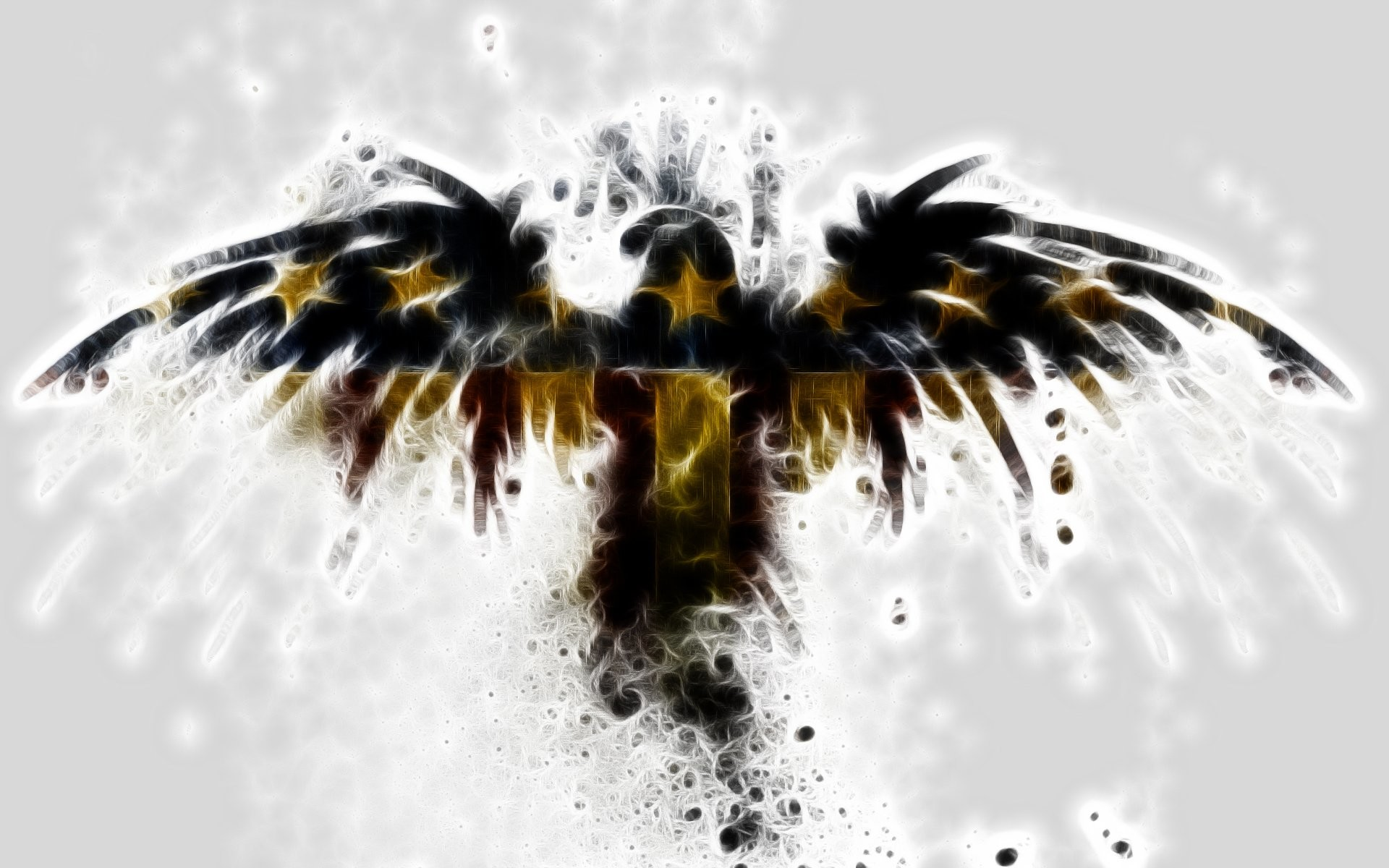patriotic eagle wallpapers 61 images